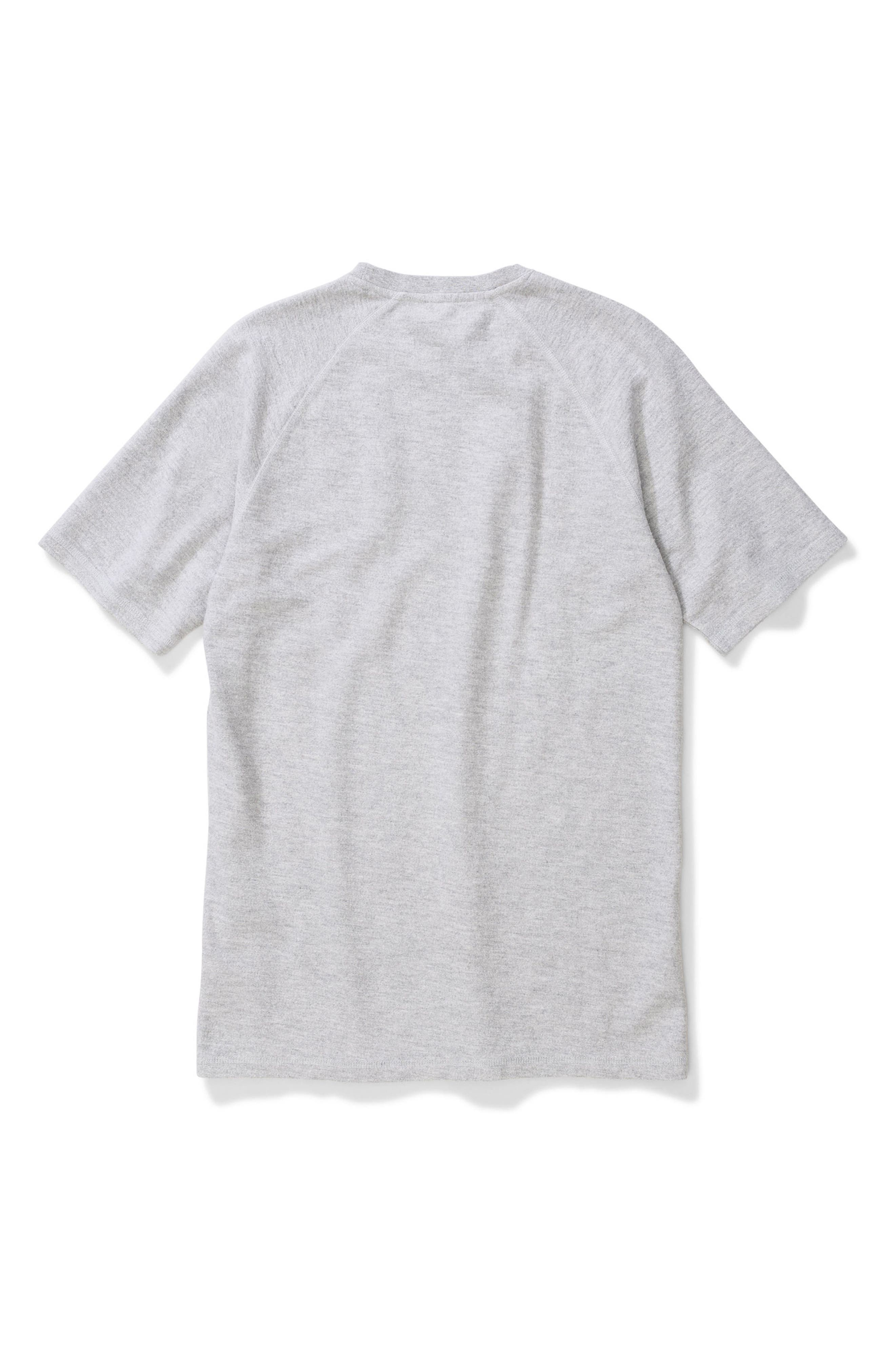 Victor Brushed Cotton T-Shirt,                             Alternate thumbnail 5, color,                             050
