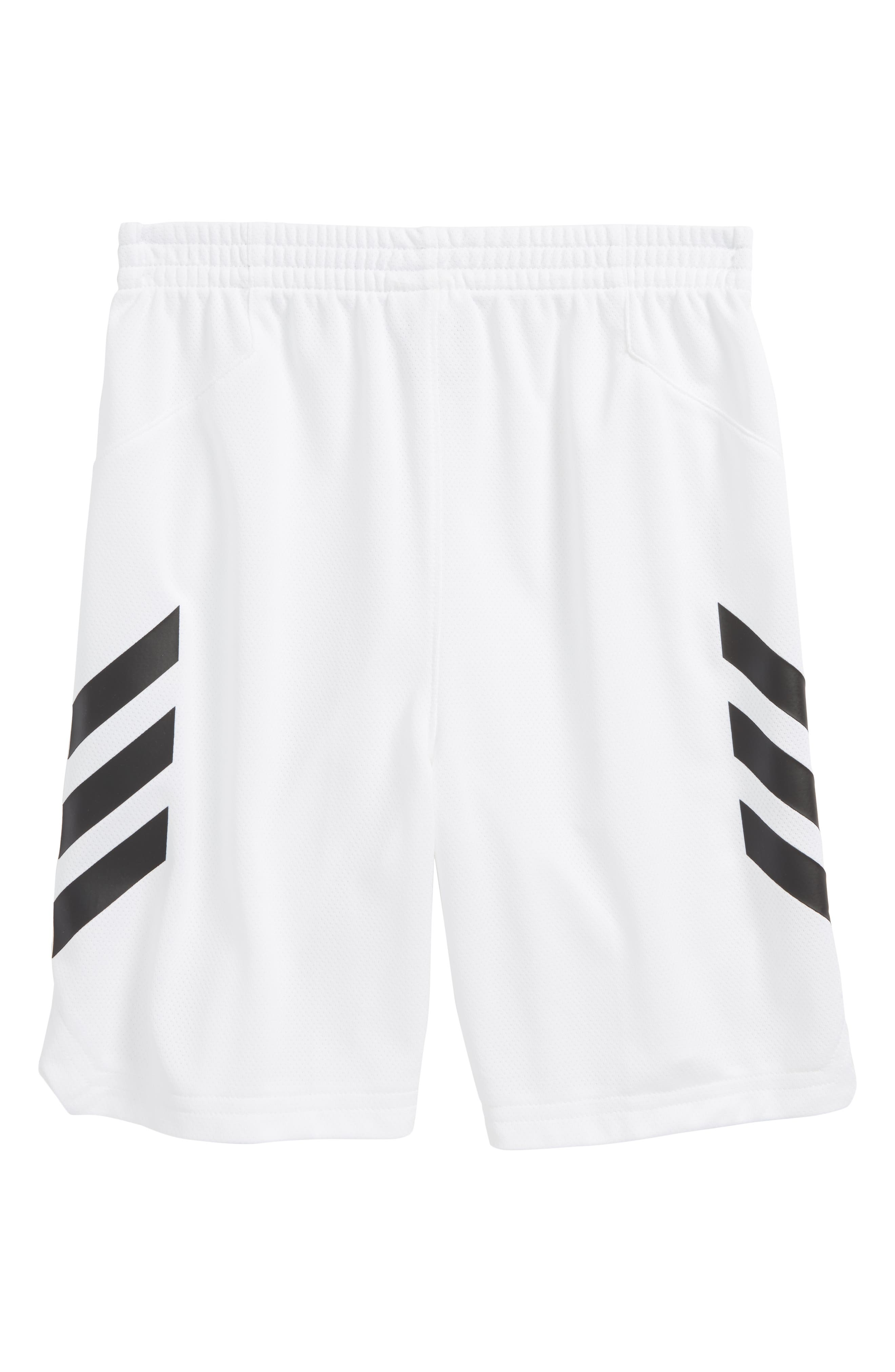Sport Shorts,                             Alternate thumbnail 4, color,