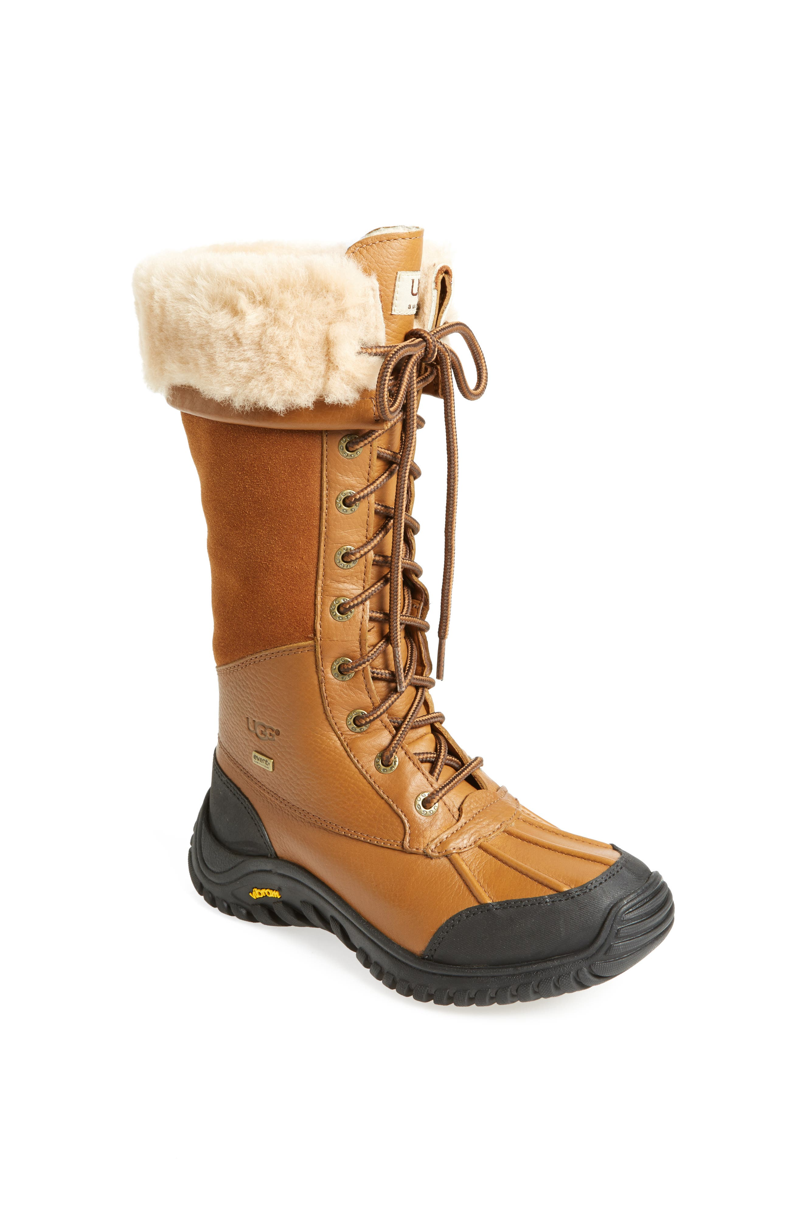 Adirondack Waterproof Tall Boot,                             Alternate thumbnail 16, color,
