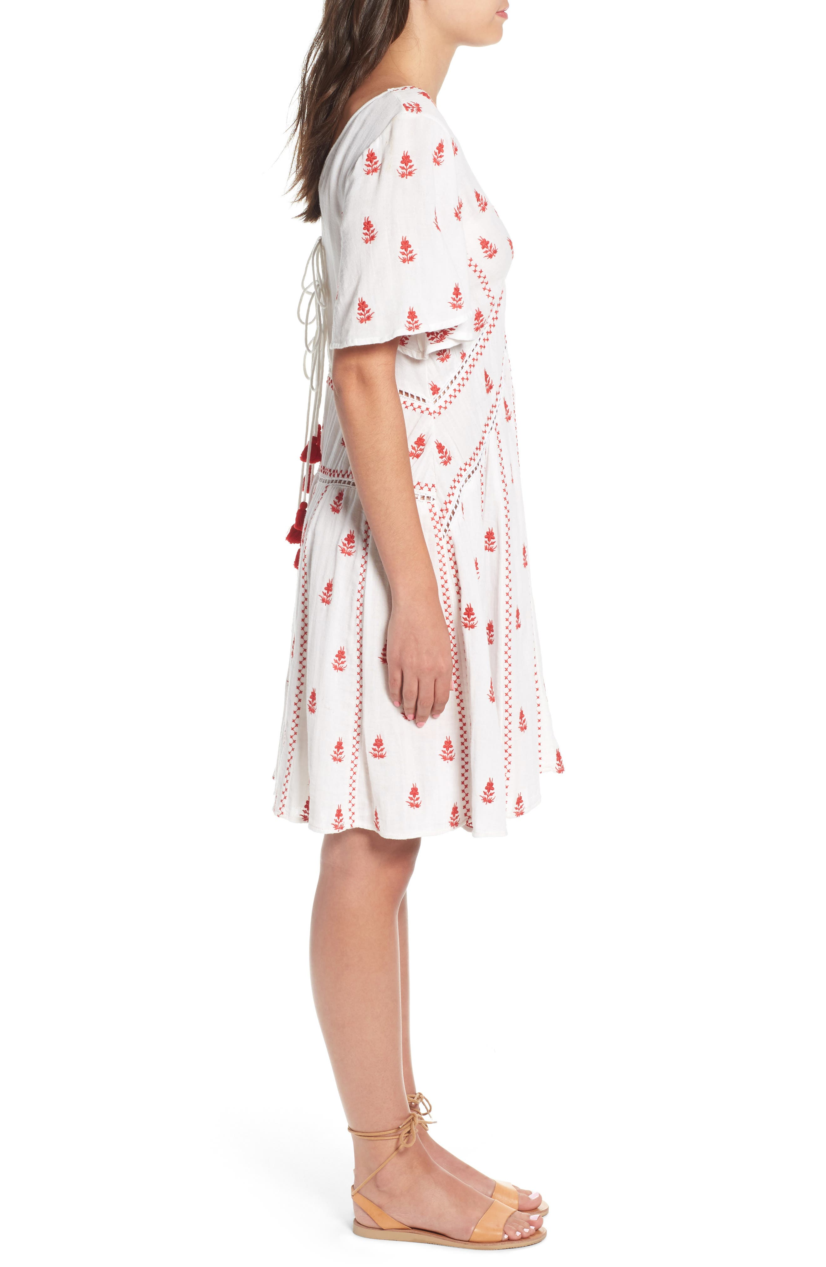 Ruby Embroidered Dress,                             Alternate thumbnail 3, color,
