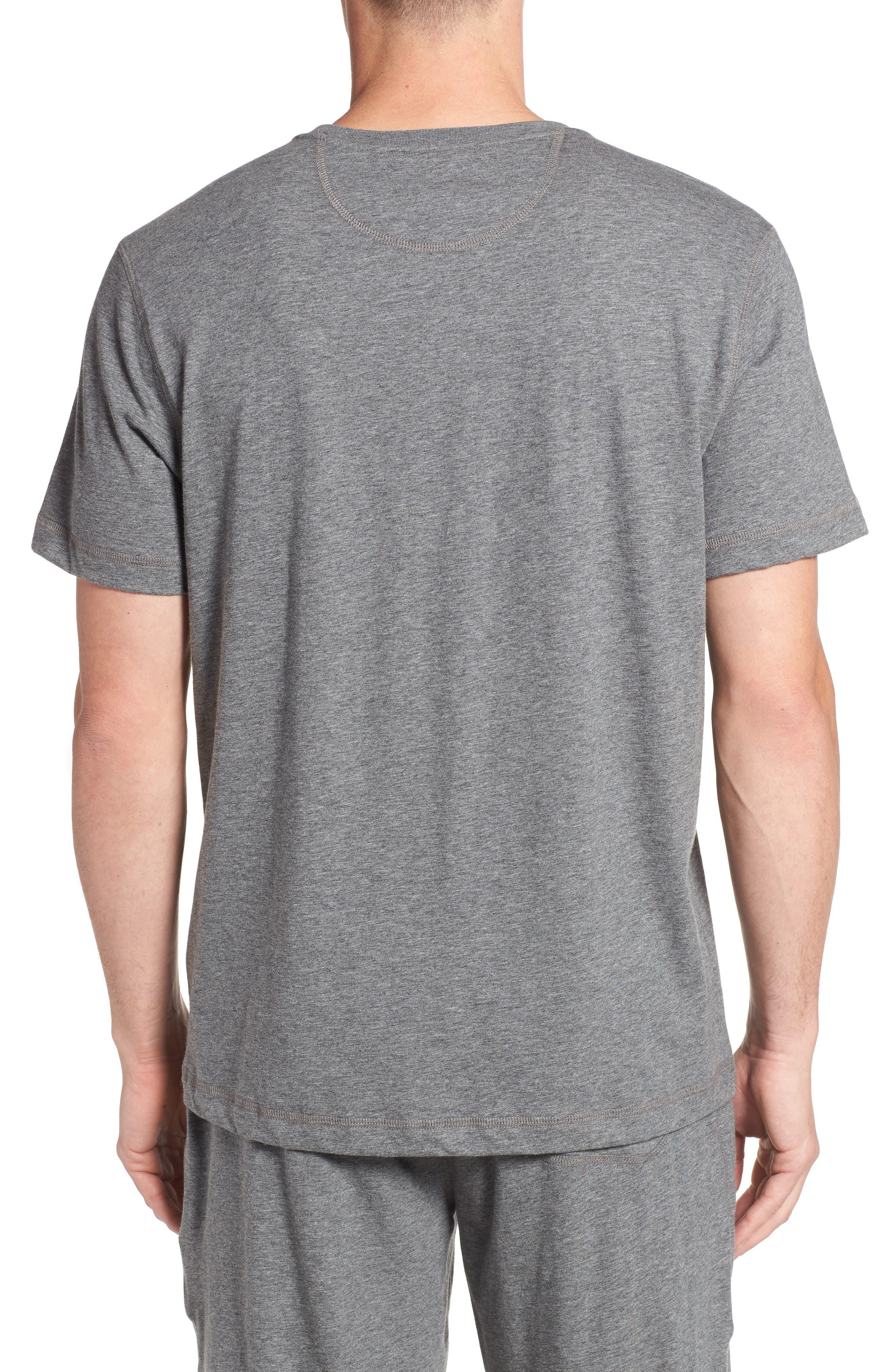 Peruvian Pima Cotton T-Shirt,                             Alternate thumbnail 2, color,                             031
