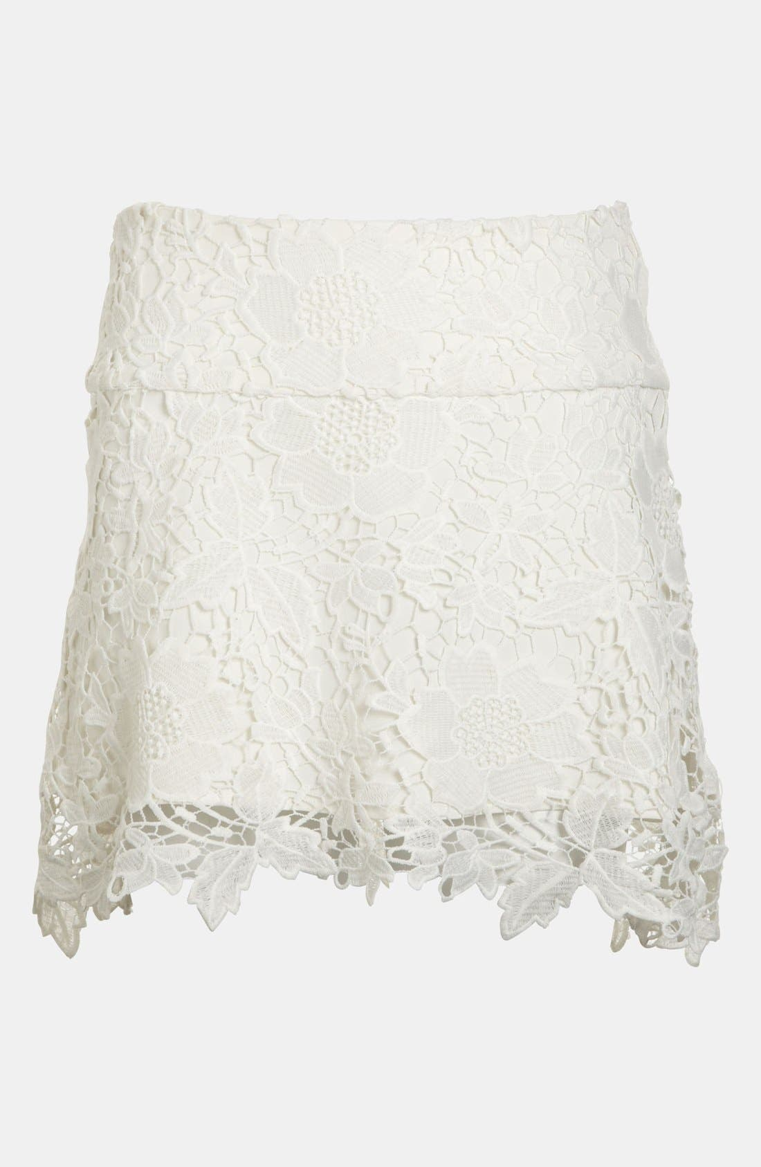 Embroidered Lace Skirt,                             Alternate thumbnail 4, color,                             100