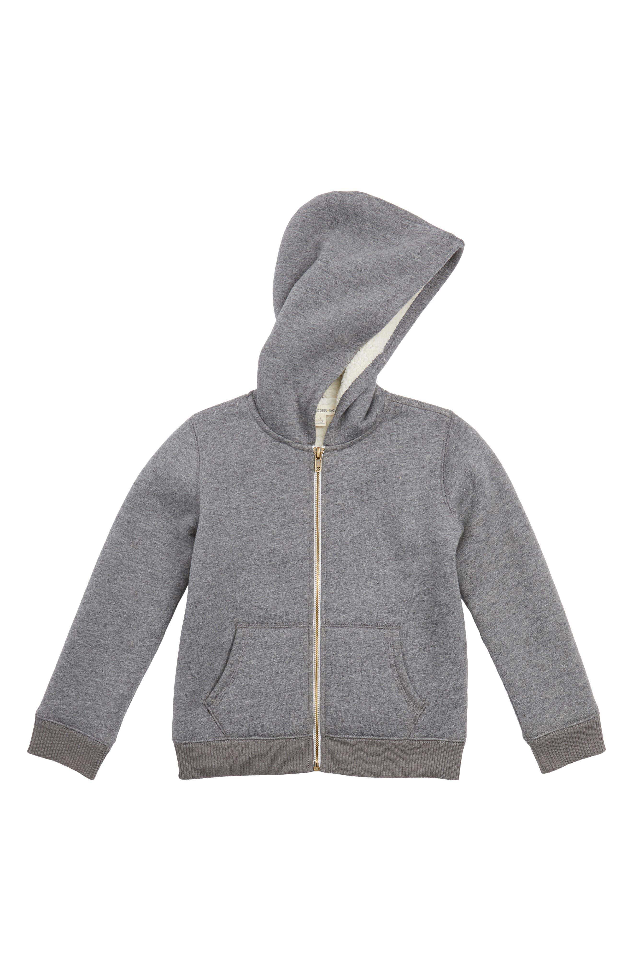 Plush Lined Zip Hoodie,                         Main,                         color, 030