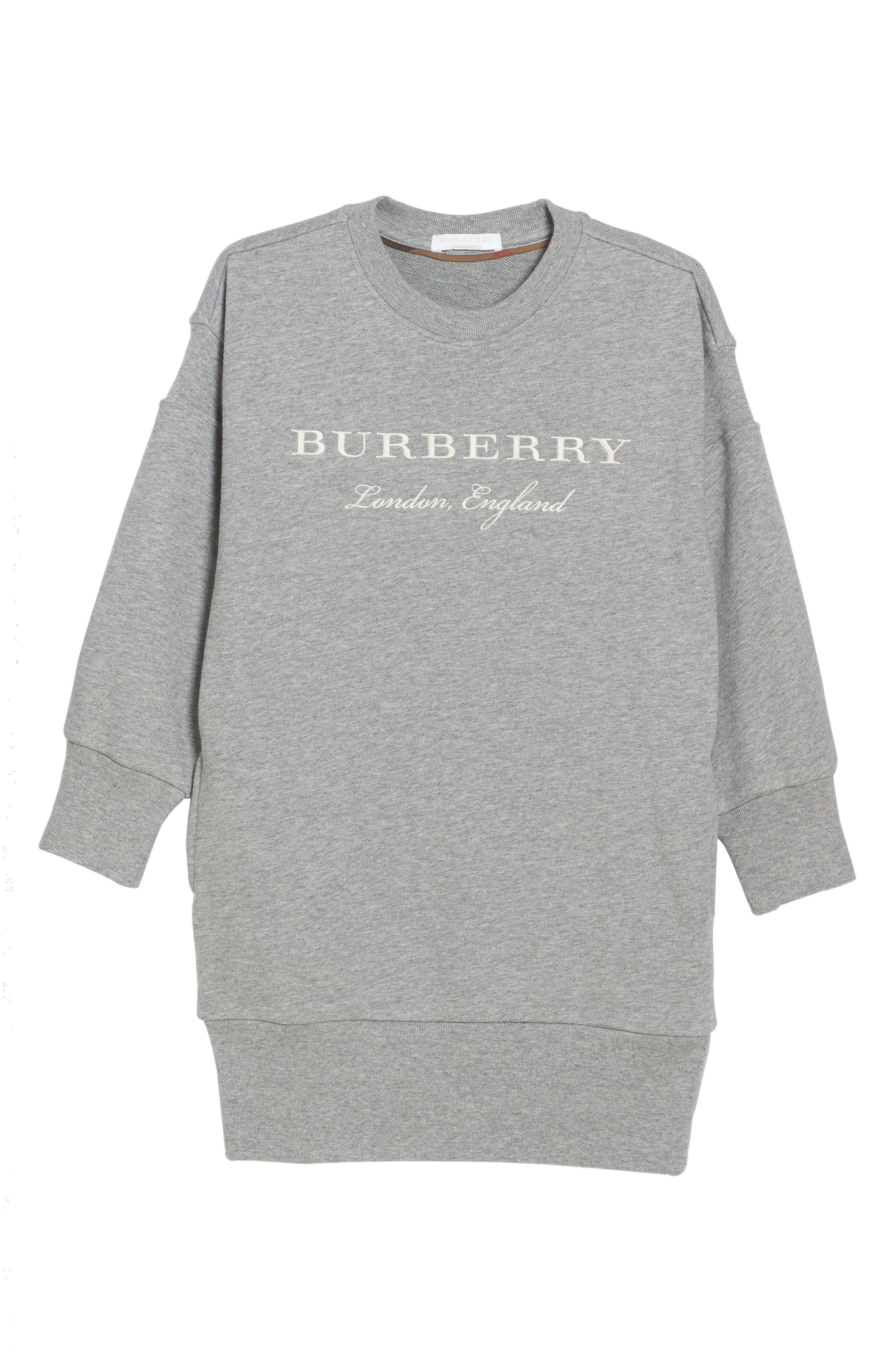 Sweatshirt Dress,                         Main,                         color, 035