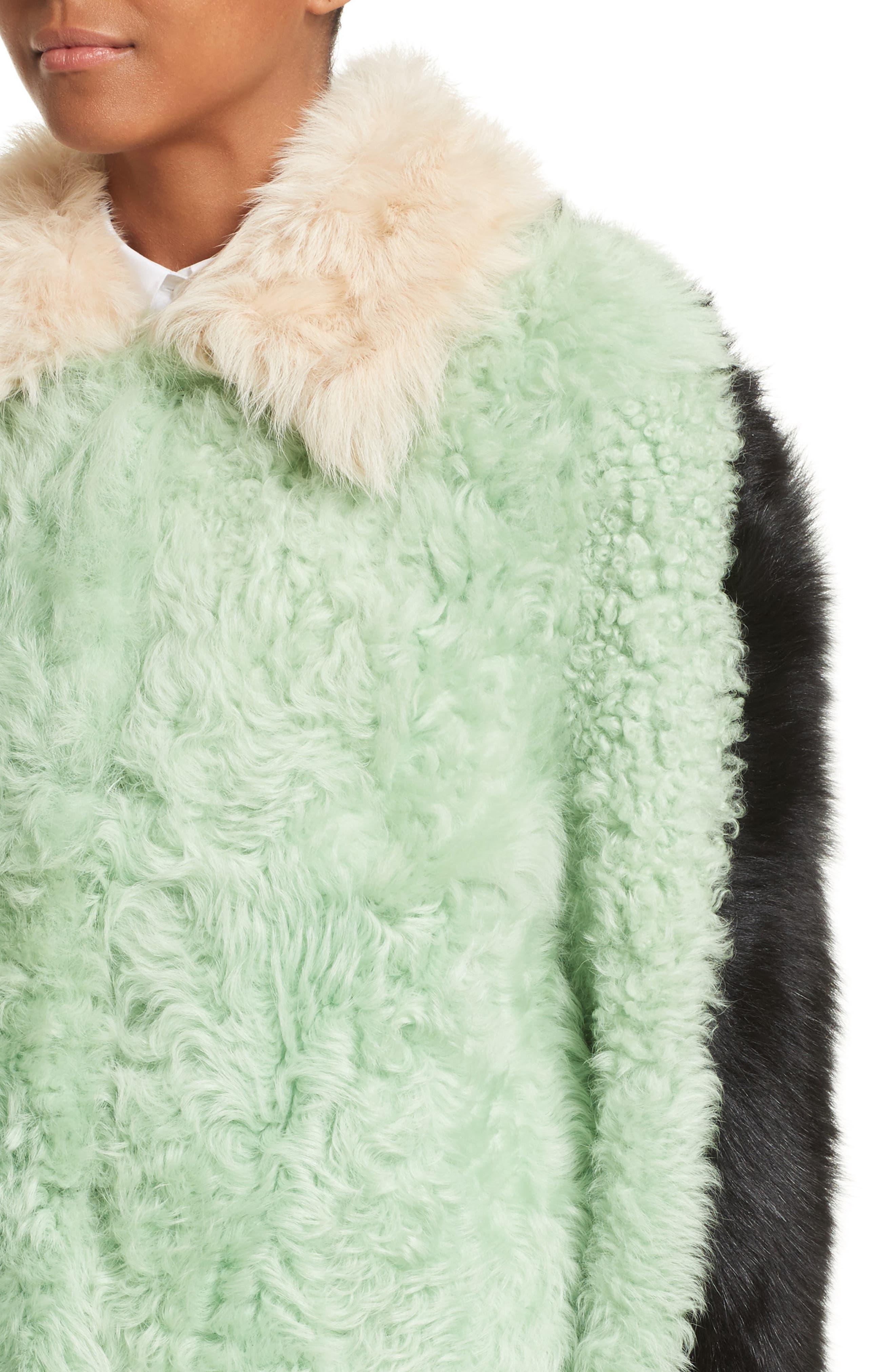 Cashew Genuine Shearling Coat,                             Alternate thumbnail 5, color,