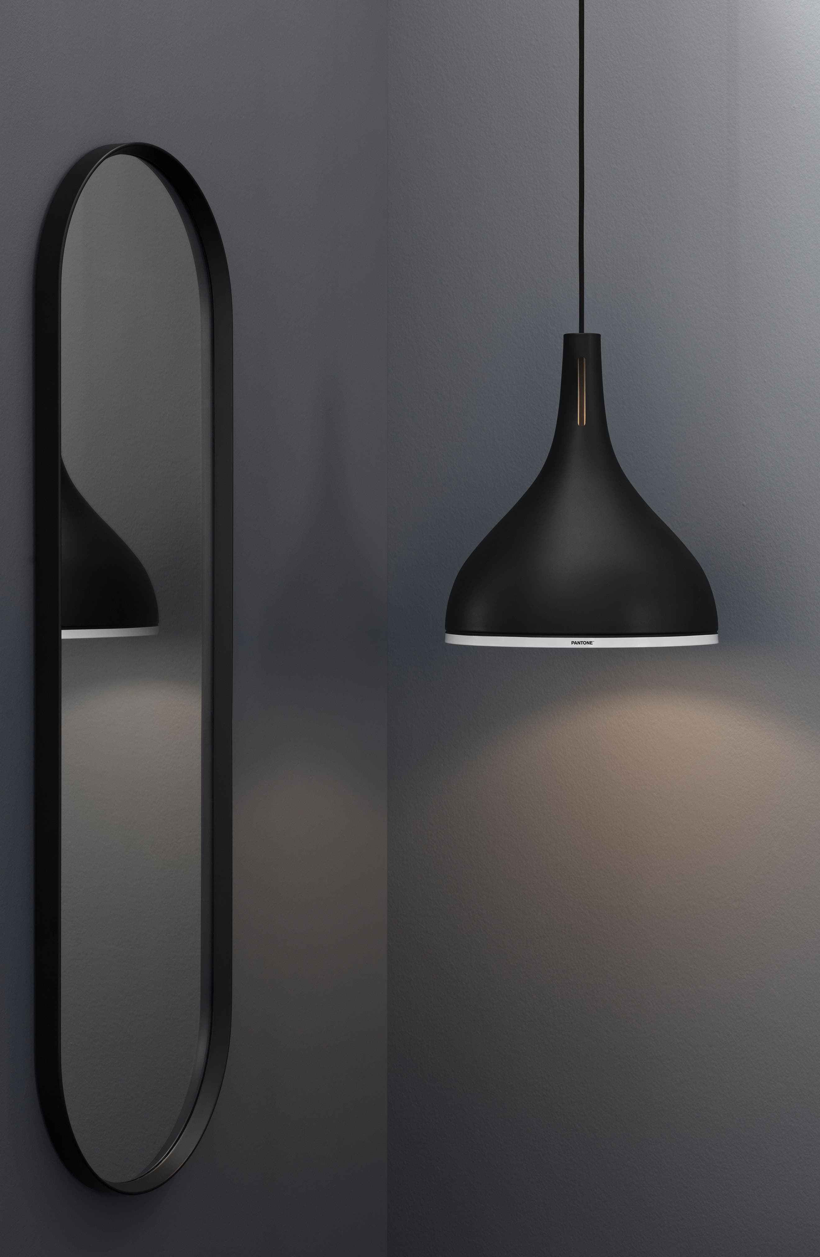 Pantone<sup>™</sup> Castor Pendant Light,                             Alternate thumbnail 2, color,                             BLACK BEAUTY