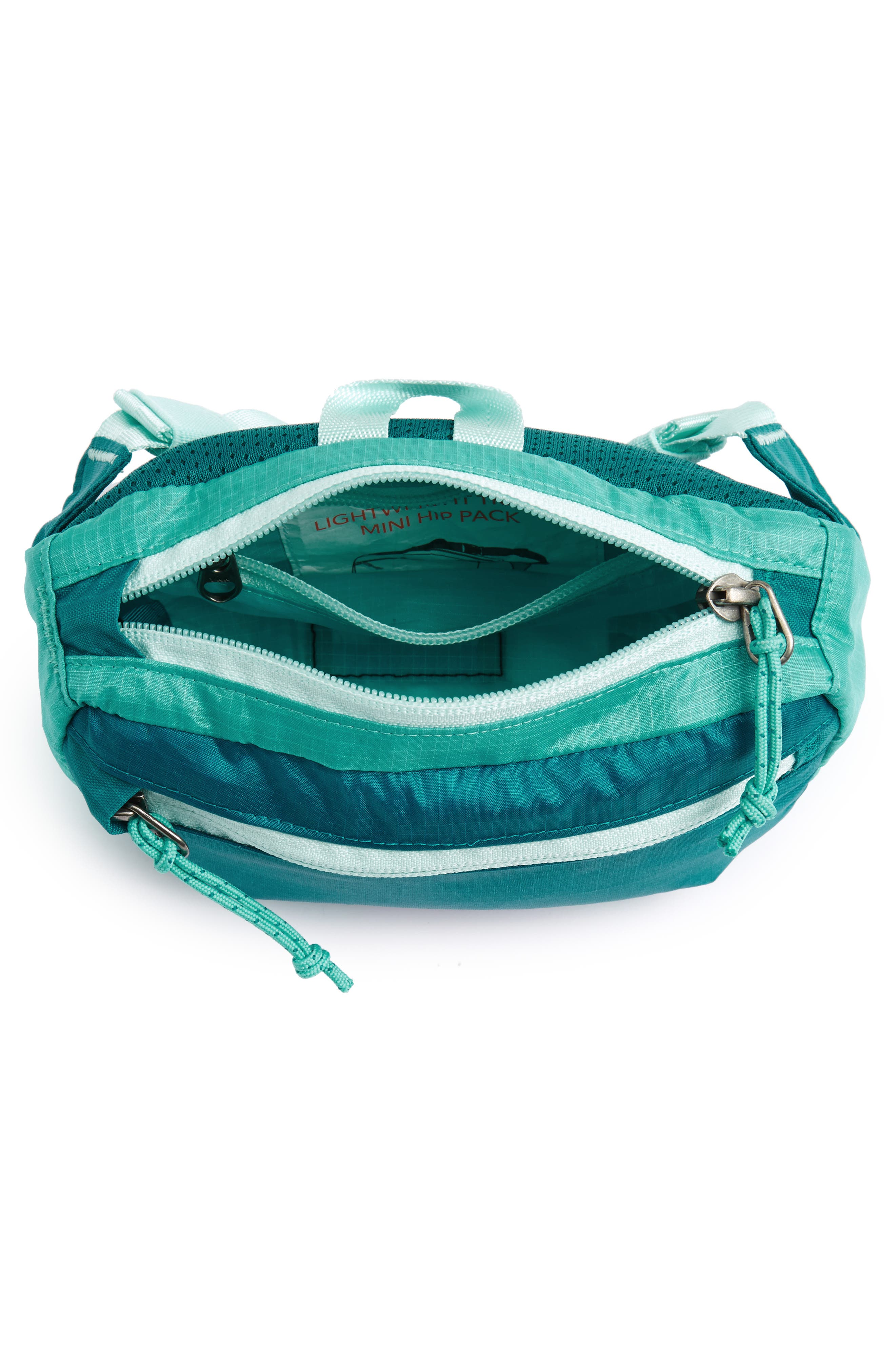 Travel Belt Bag,                             Alternate thumbnail 13, color,