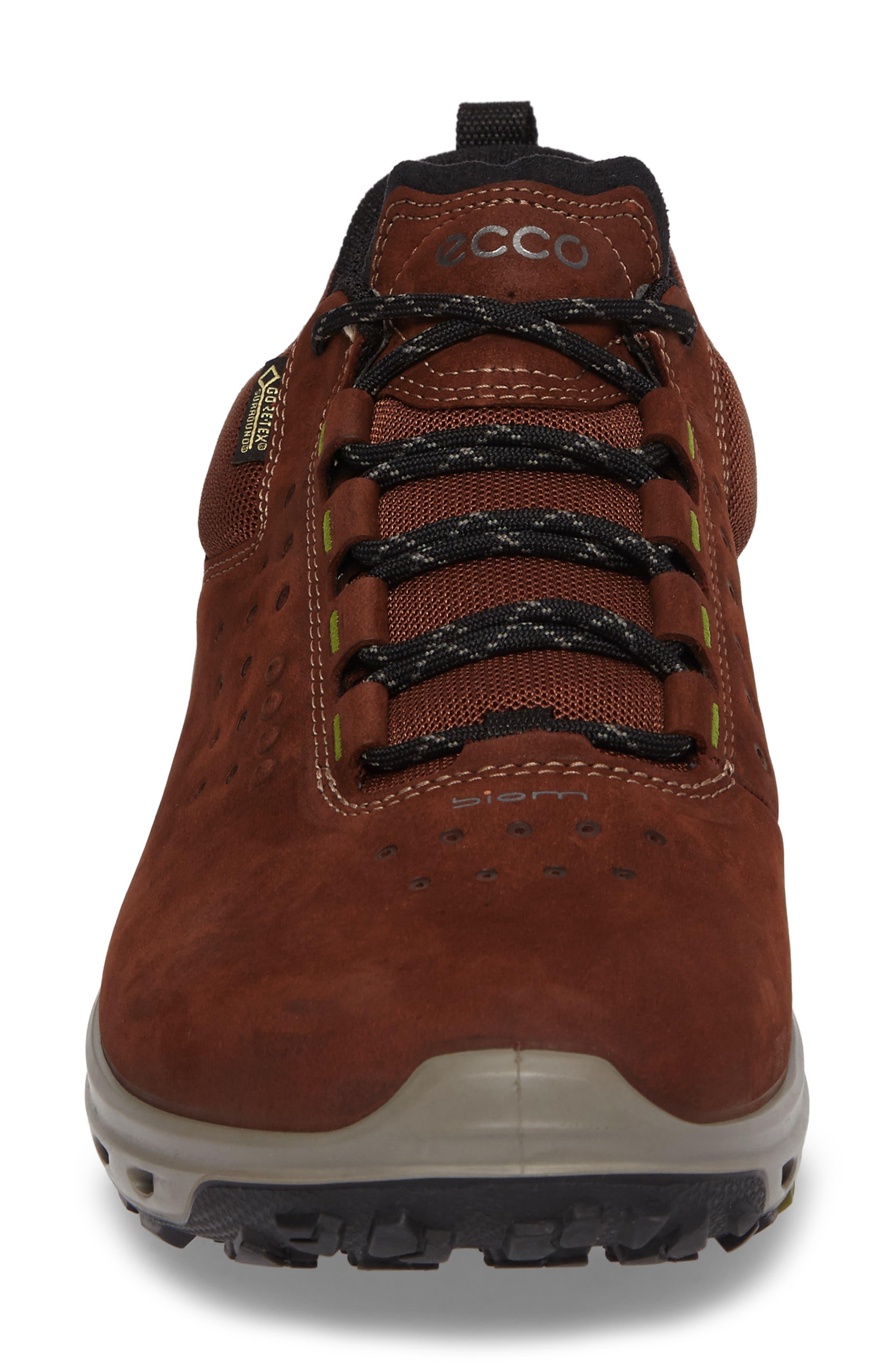 Biom Venture GTX Sneaker,                             Alternate thumbnail 12, color,