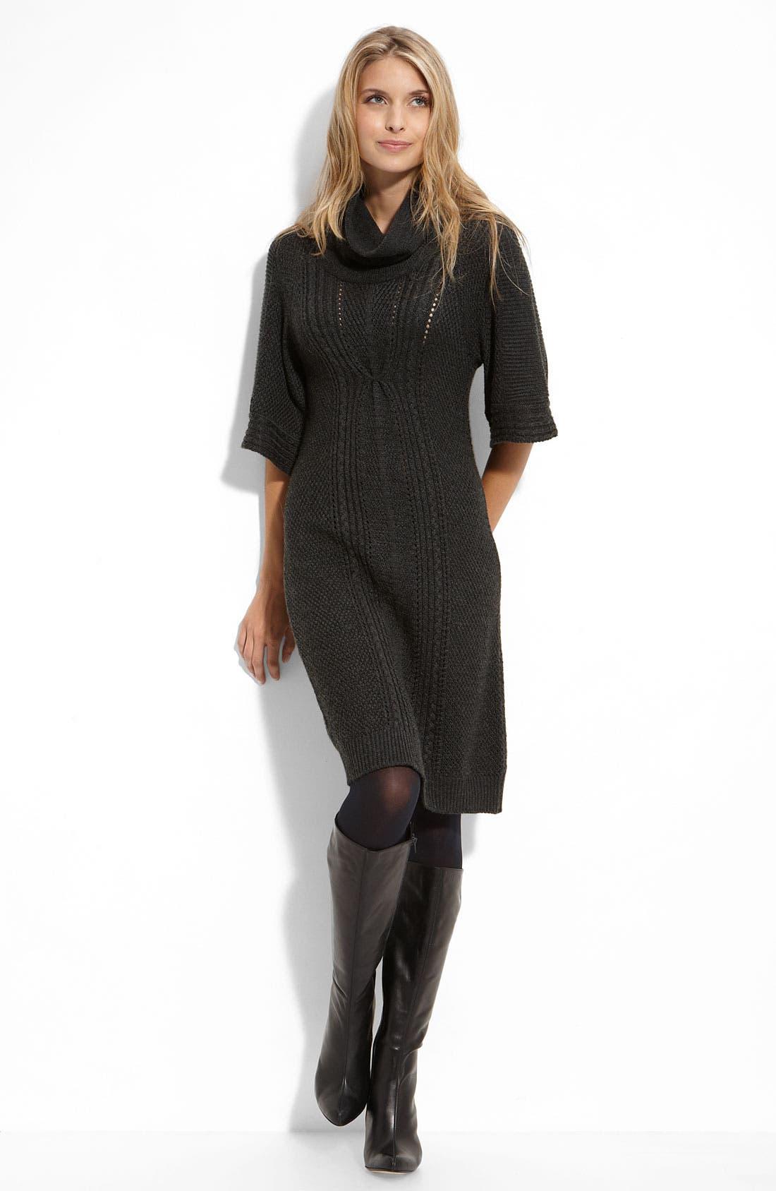 by Arthur S. Levine Cowl Neck Sweater Dress,                             Main thumbnail 1, color,                             020