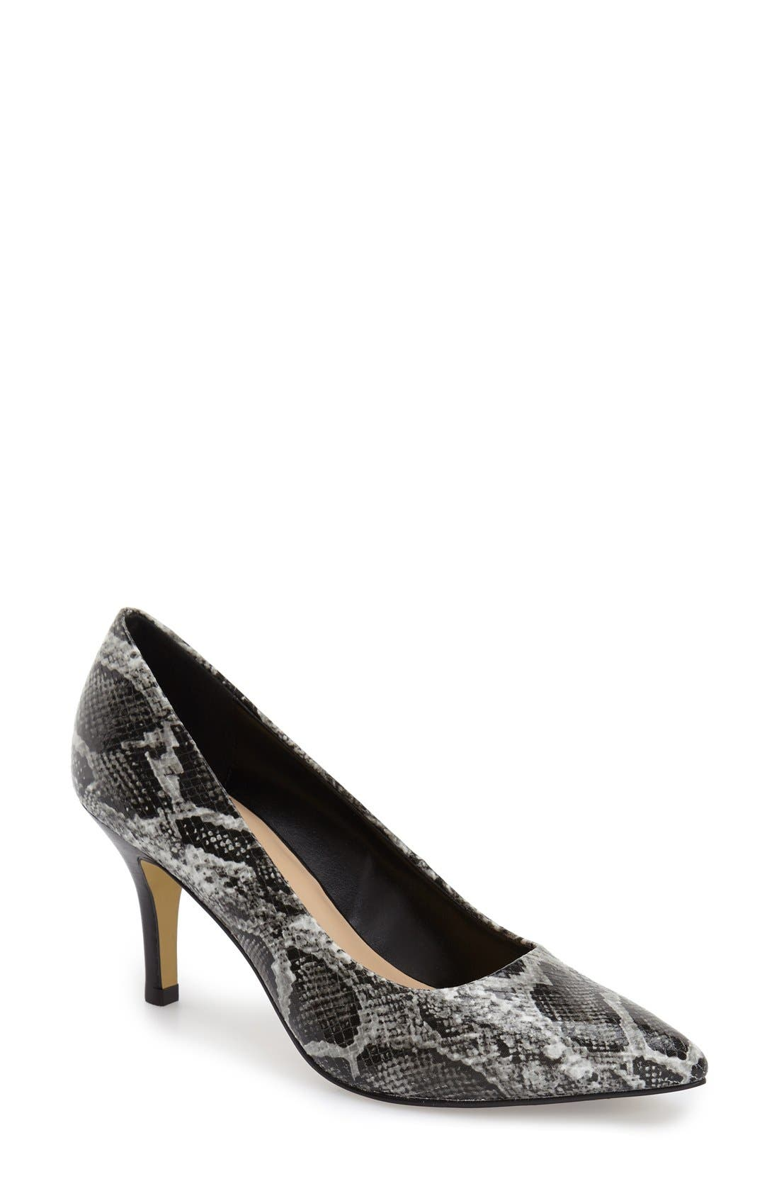 'Define' Pointy Toe Pump,                         Main,                         color, 013