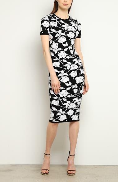 Stencil Rose Jacquard Dress, video thumbnail