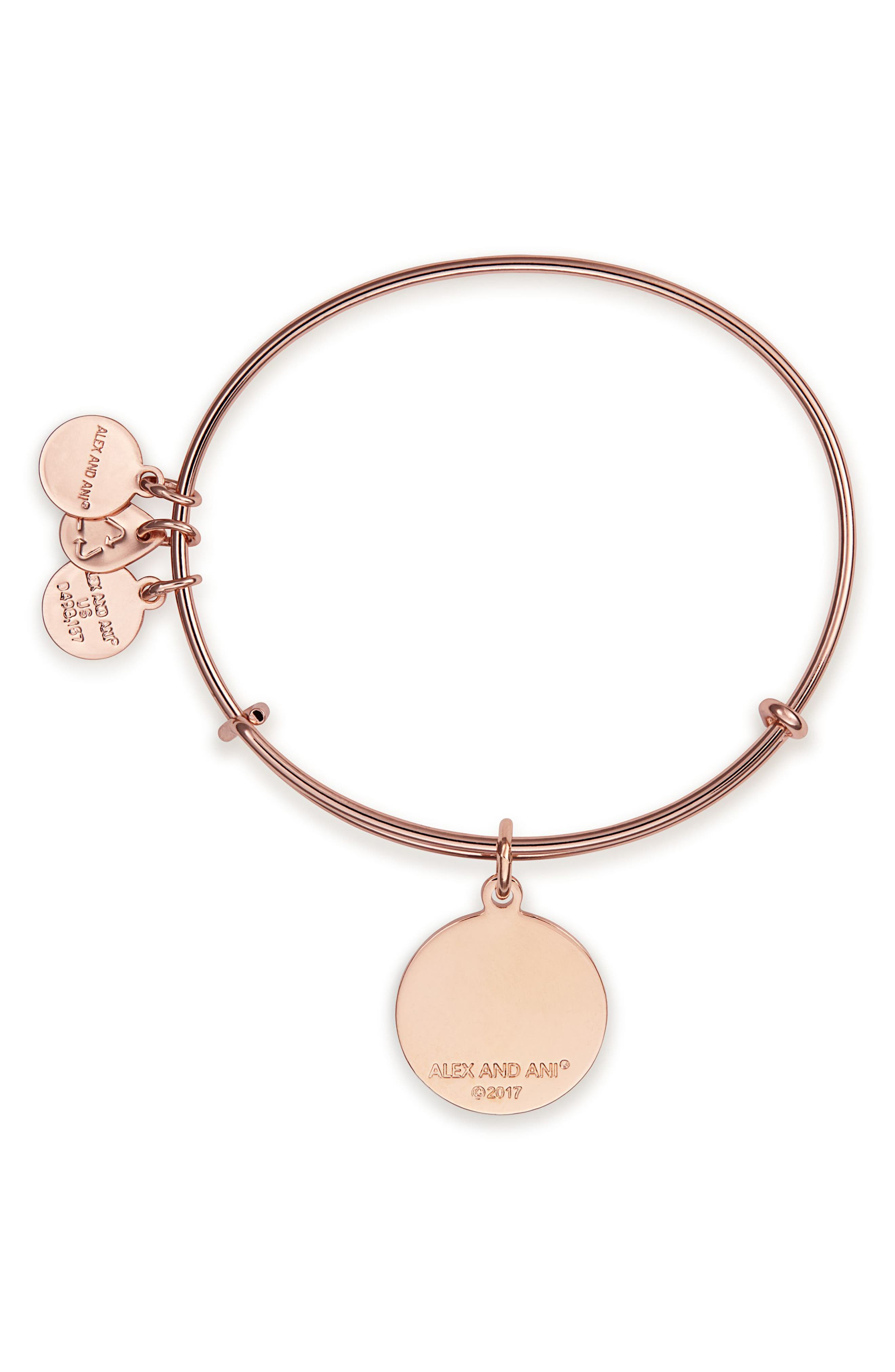 Mind over Matter Expandable Charm Bangle,                             Alternate thumbnail 2, color,                             650