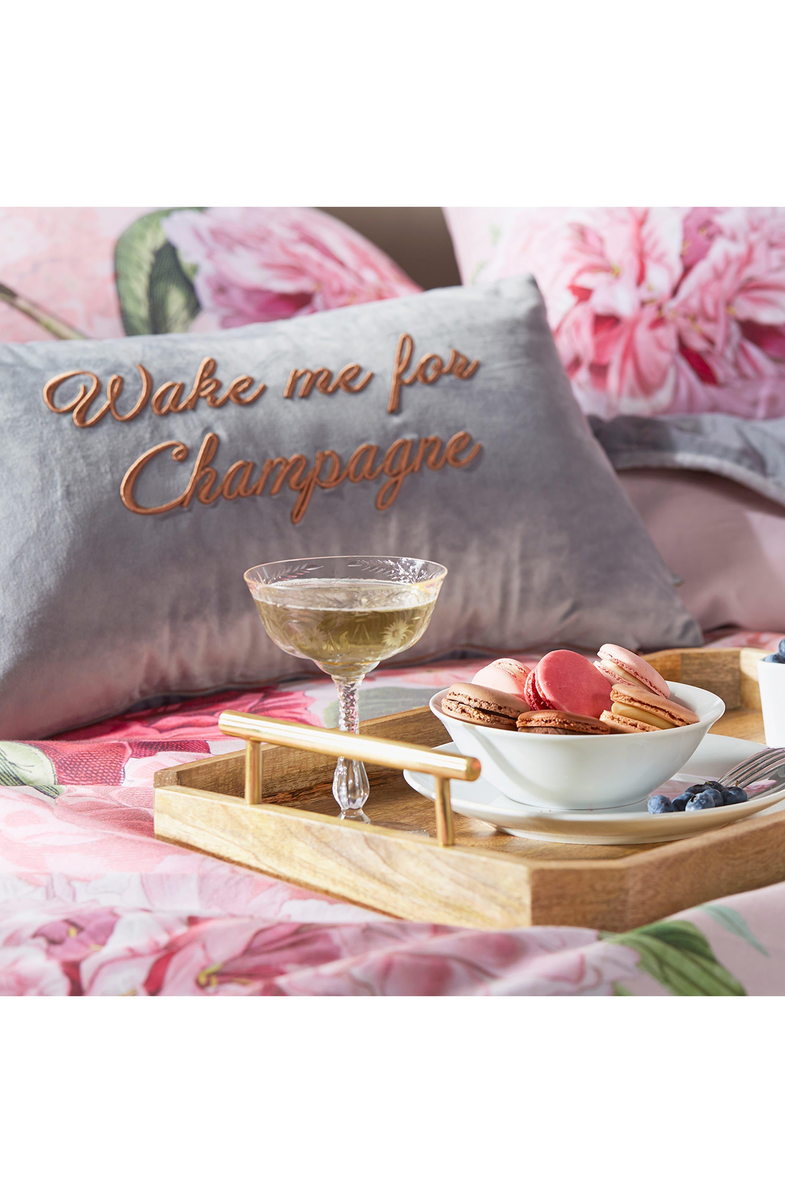 Wake Me for Champagne Velvet Accent Pillow,                             Alternate thumbnail 2, color,                             GREY