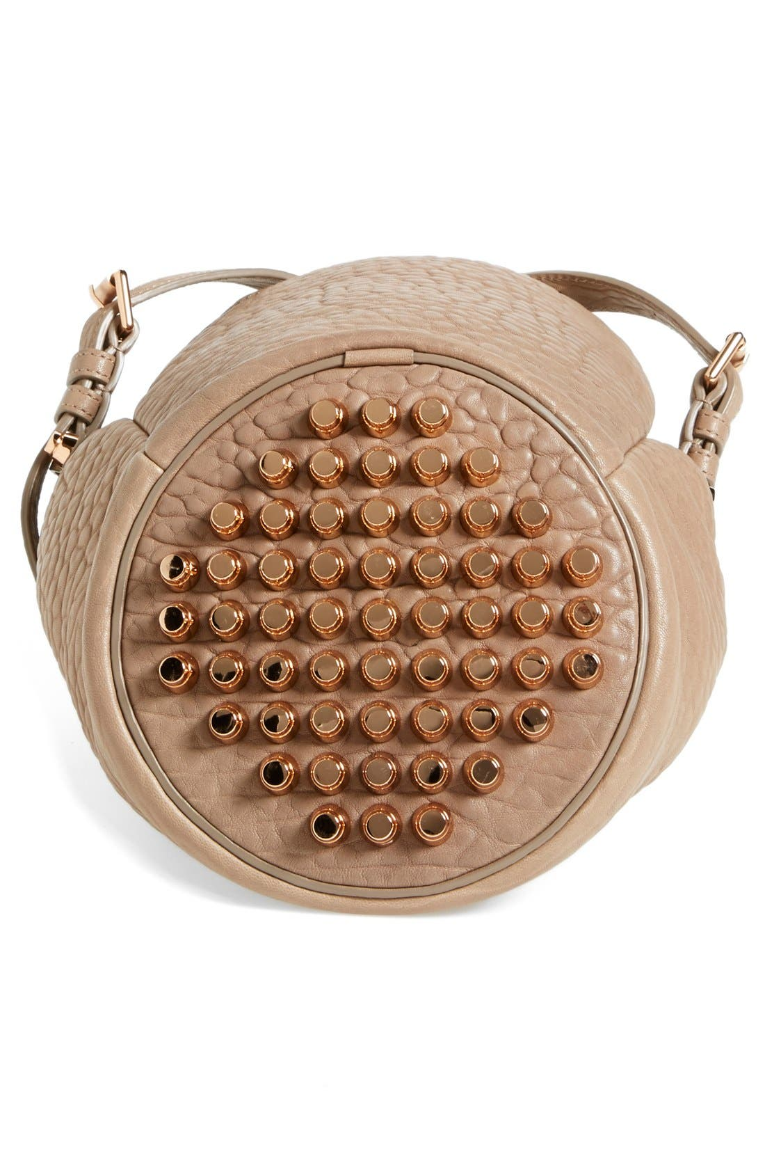 'Small Diego - Rose Gold' Leather Bucket Bag,                             Alternate thumbnail 5, color,                             250