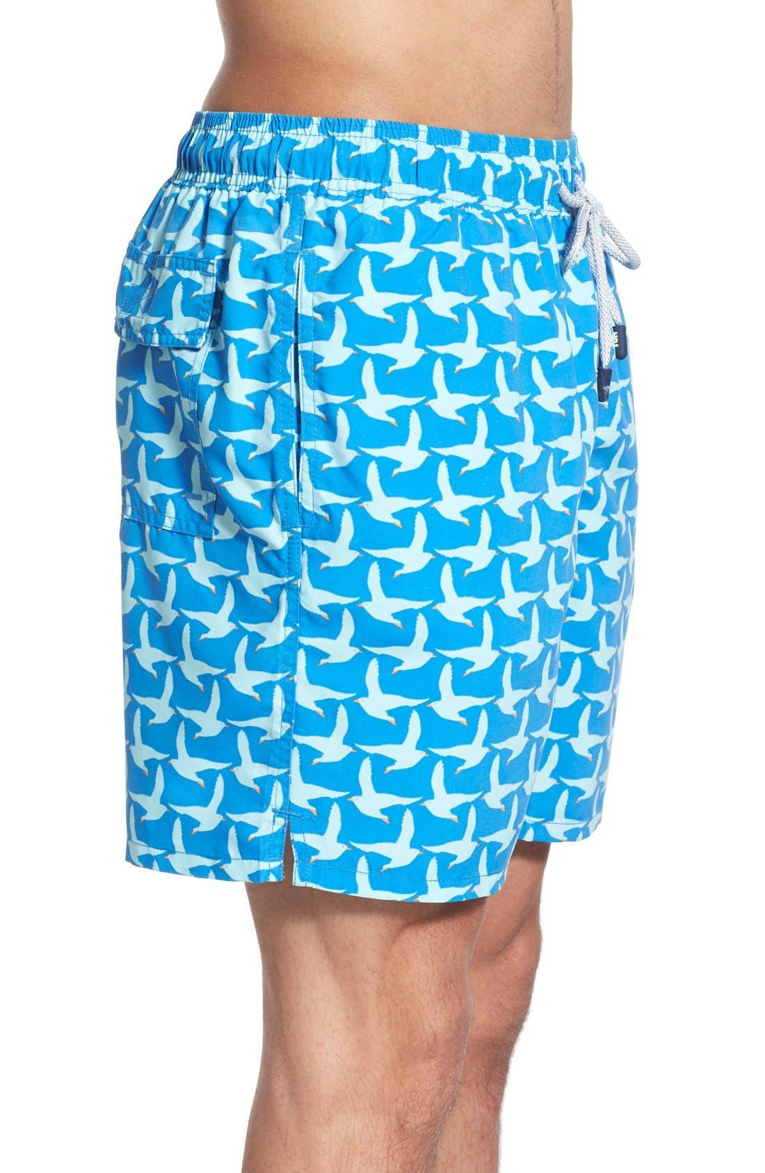 TOM & TEDDY,                             Seagull Print Swim Trunks,                             Alternate thumbnail 3, color,                             COBALT BLUE