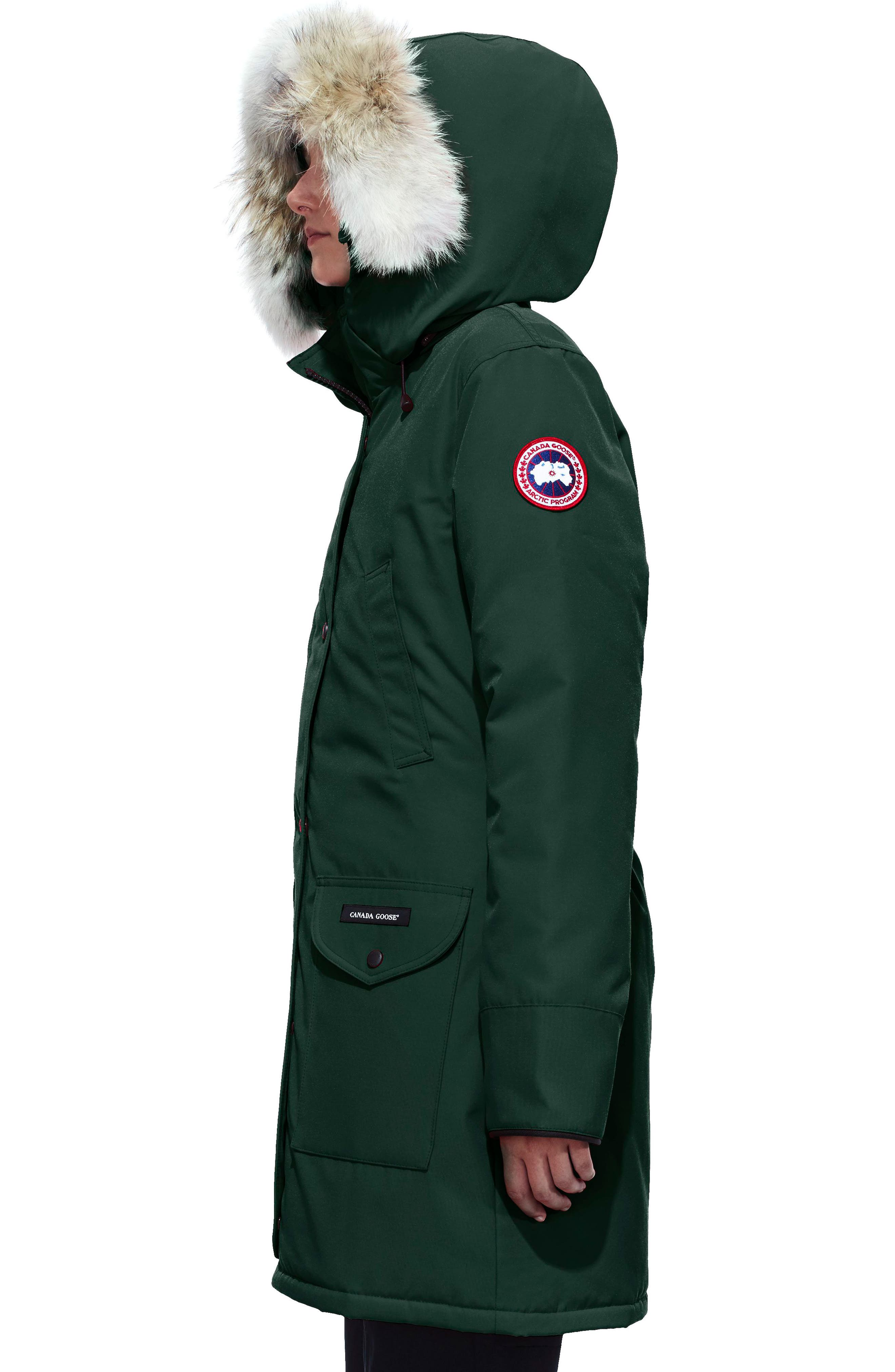 'Trillium' Regular Fit Down Parka with Genuine Coyote Fur Trim,                             Alternate thumbnail 3, color,                             SPRUCE