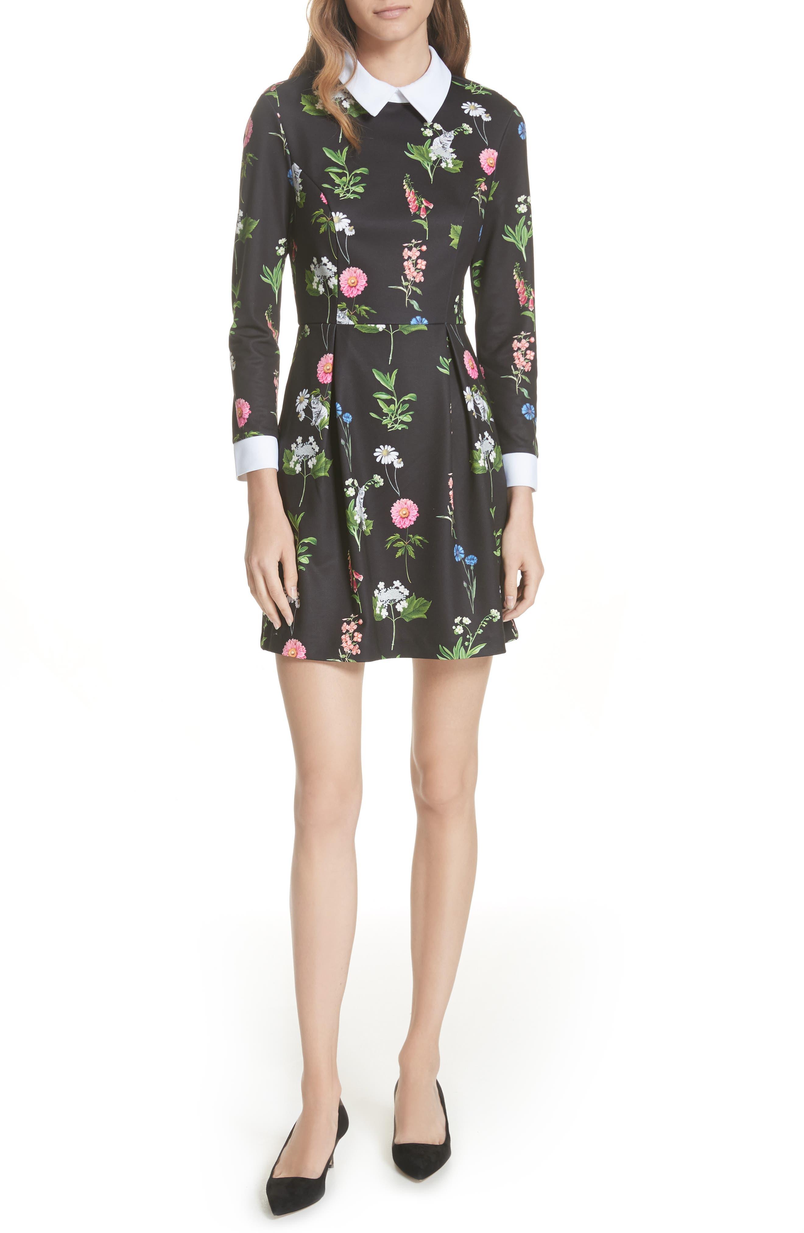 Matredi Florence Point Collar Dress,                             Main thumbnail 1, color,                             001