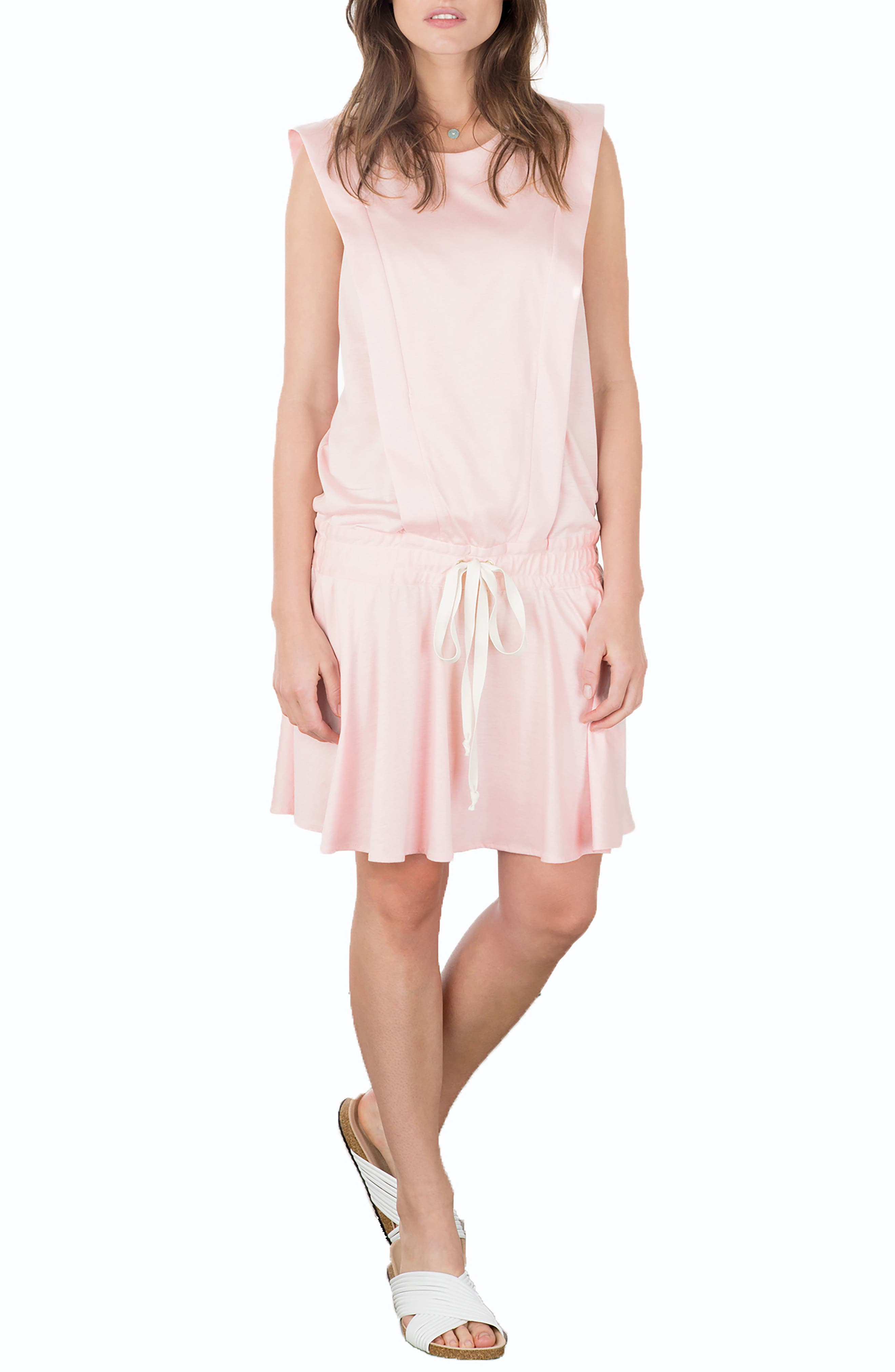 Irene Drop Waist Nursing Dress,                         Main,                         color, 650