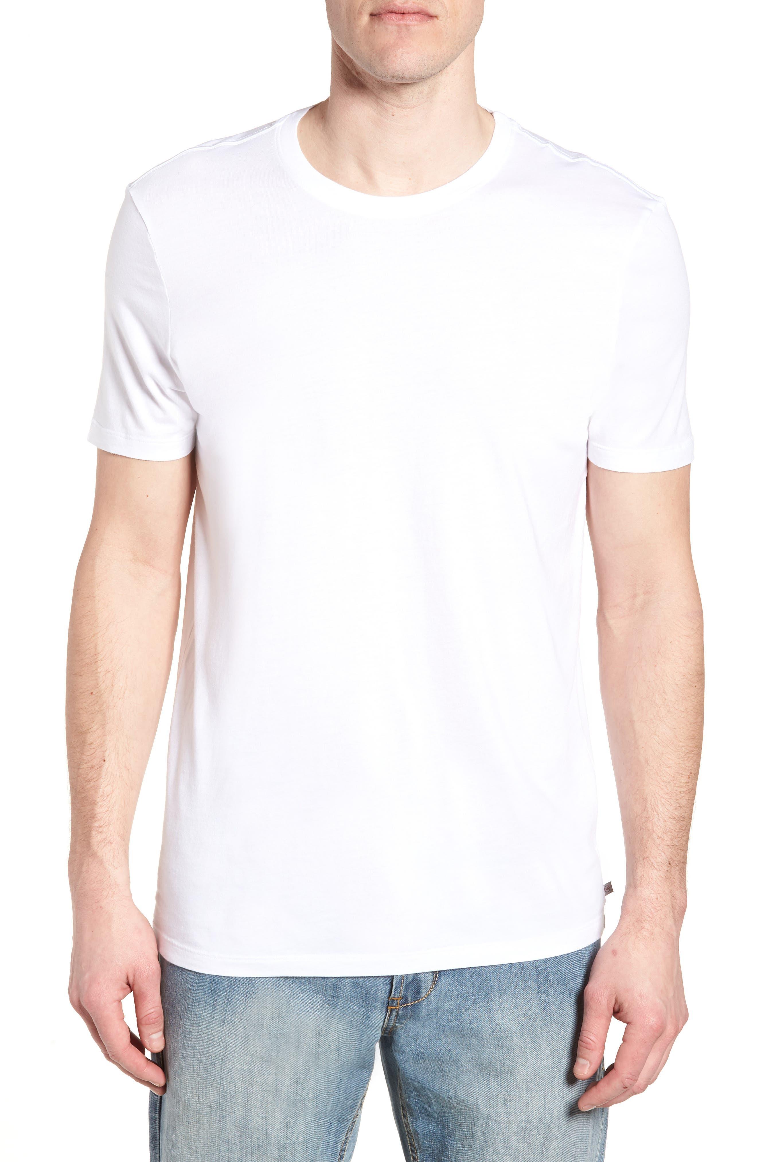 Bryce Slim Fit T-Shirt,                             Main thumbnail 2, color,
