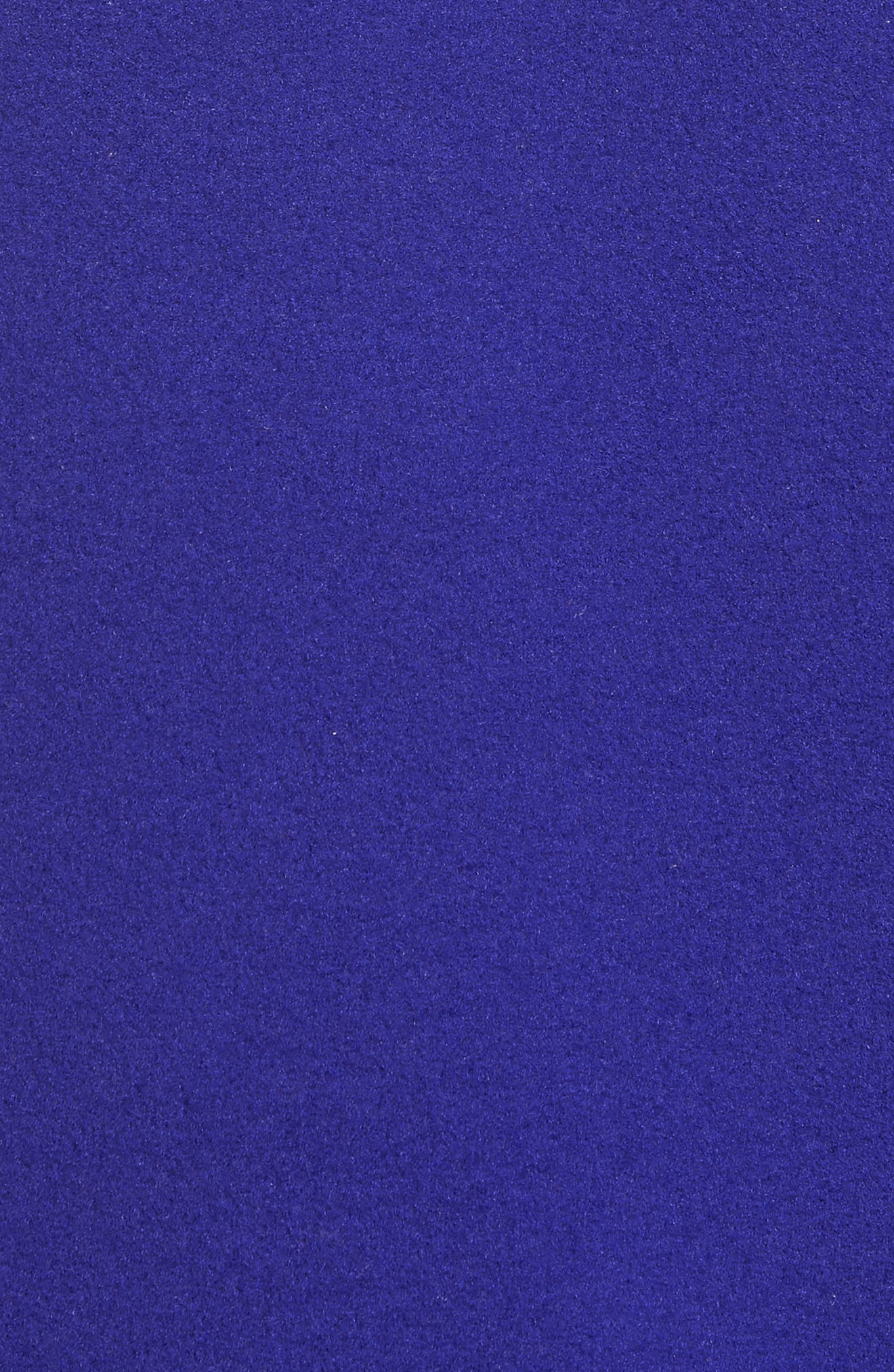 Denali 2 Jacket,                             Alternate thumbnail 7, color,                             LAPIS BLUE/ TNF BLACK