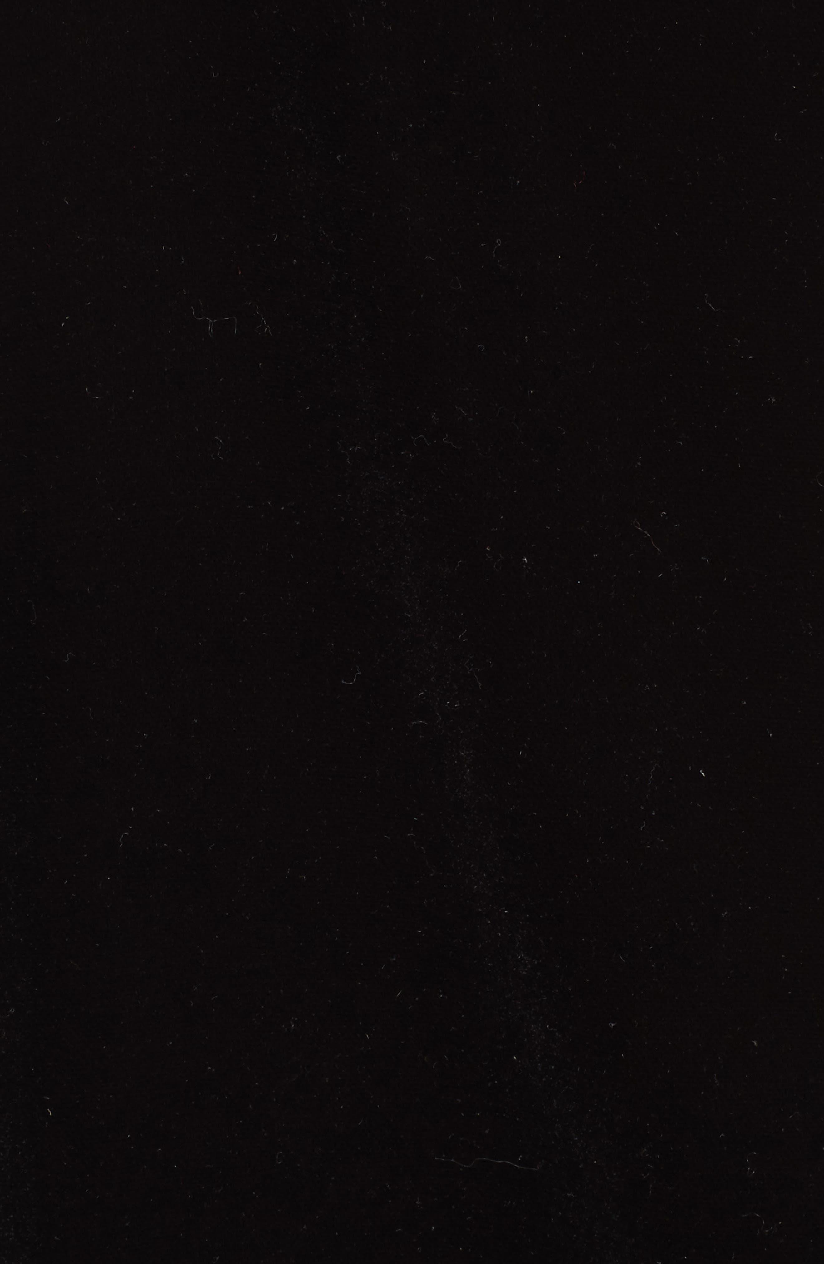 Elliott Velvet V-Neck Camisole,                             Alternate thumbnail 5, color,