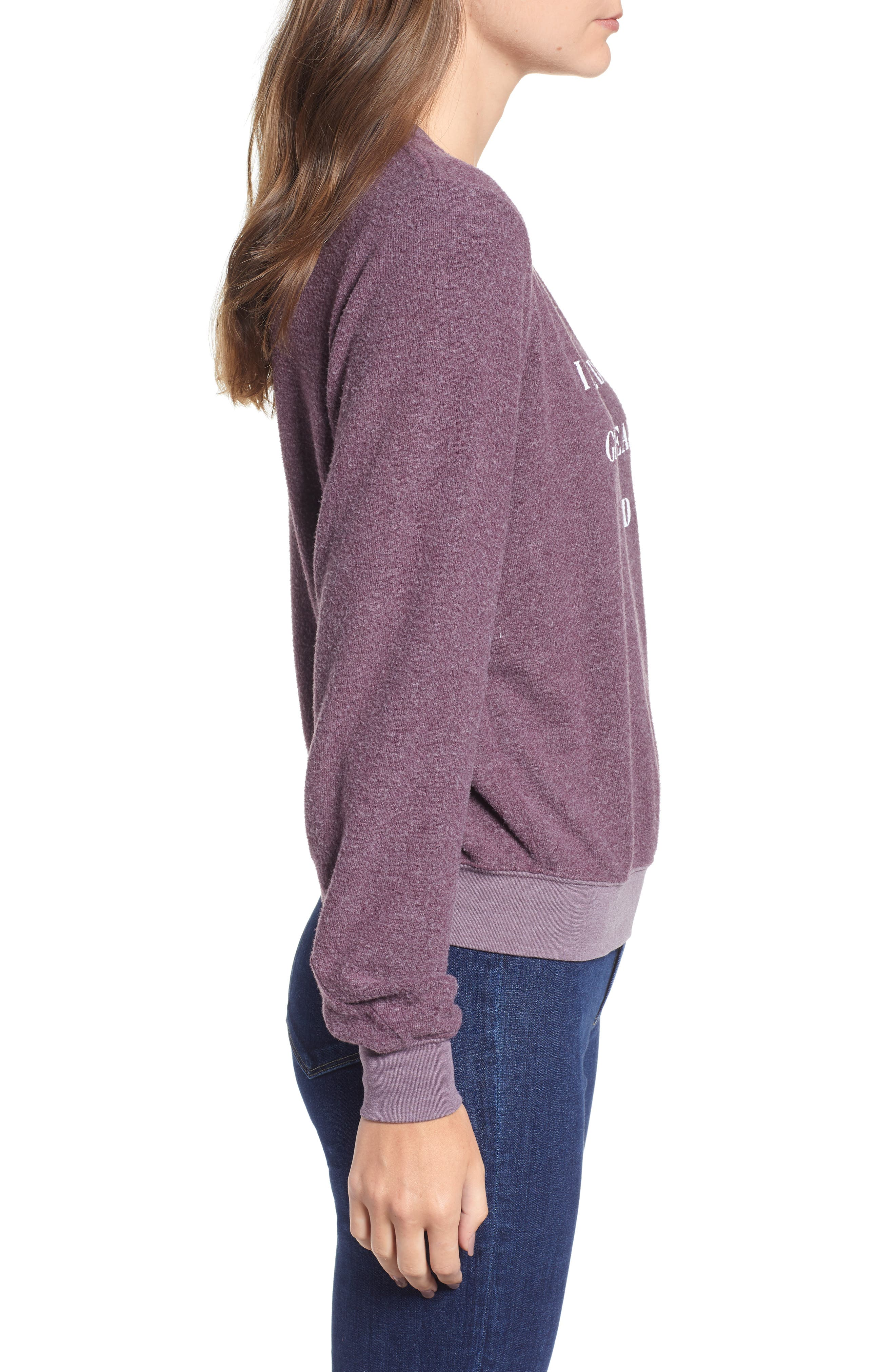 Ready For Bed Baggy Beach Jumper Sweatshirt,                             Alternate thumbnail 3, color,                             CRUSHED BERRY
