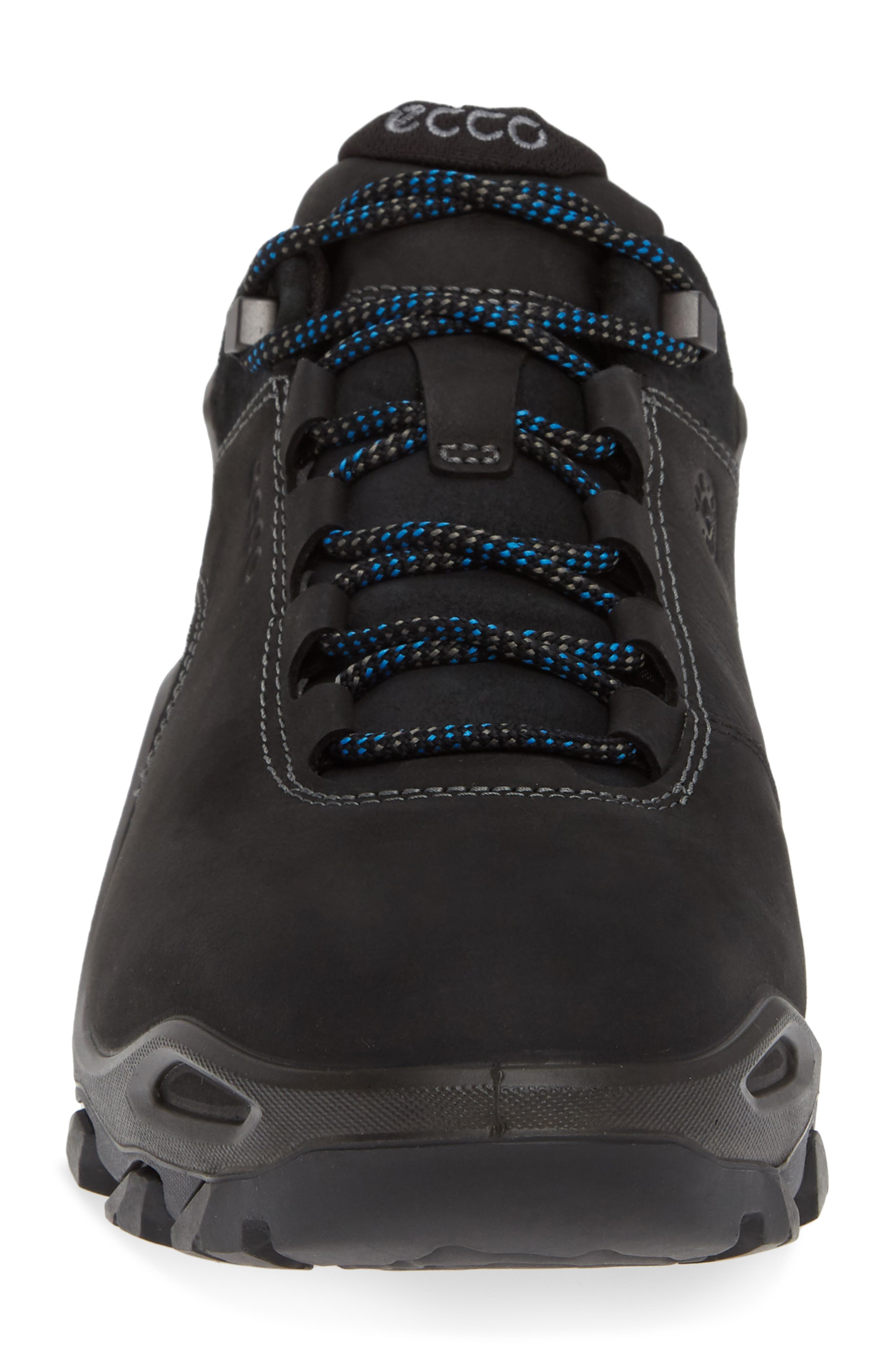 Terra Evo GTX Low Hiking Shoe,                             Alternate thumbnail 4, color,                             009