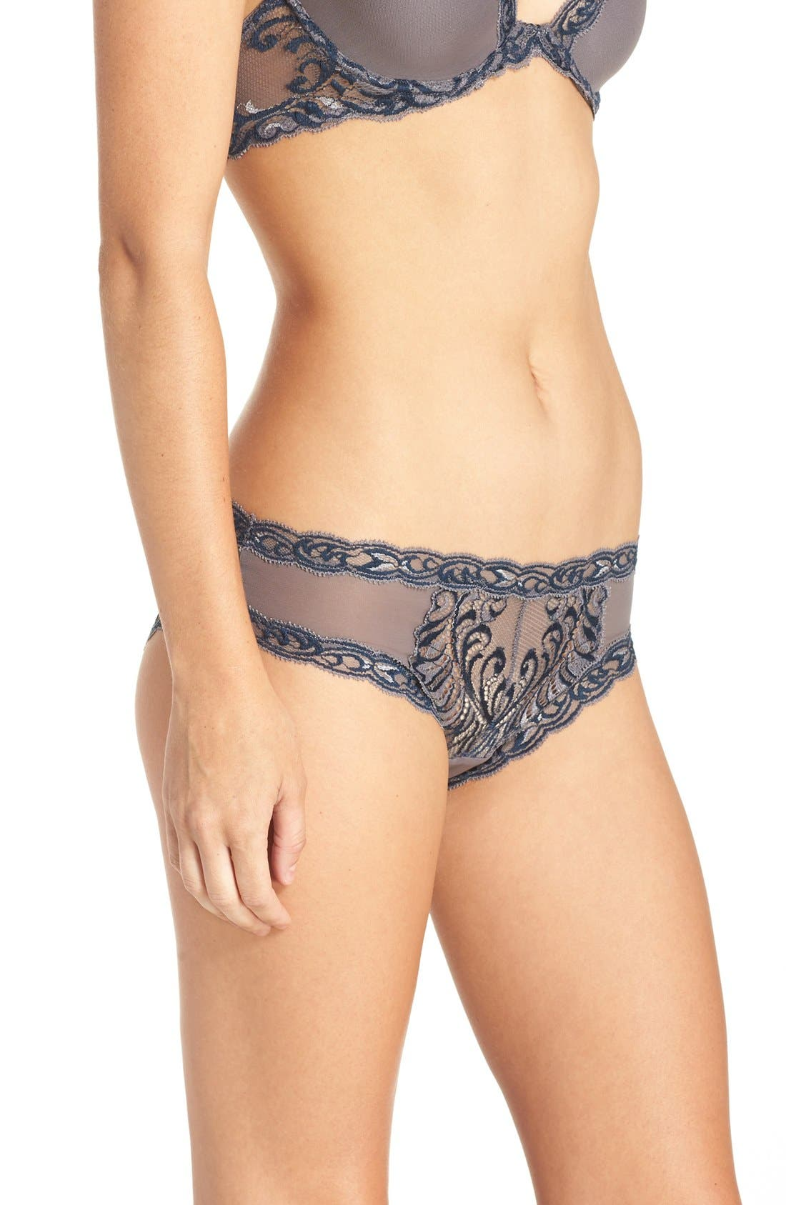 Feathers Hipster Briefs,                             Alternate thumbnail 133, color,