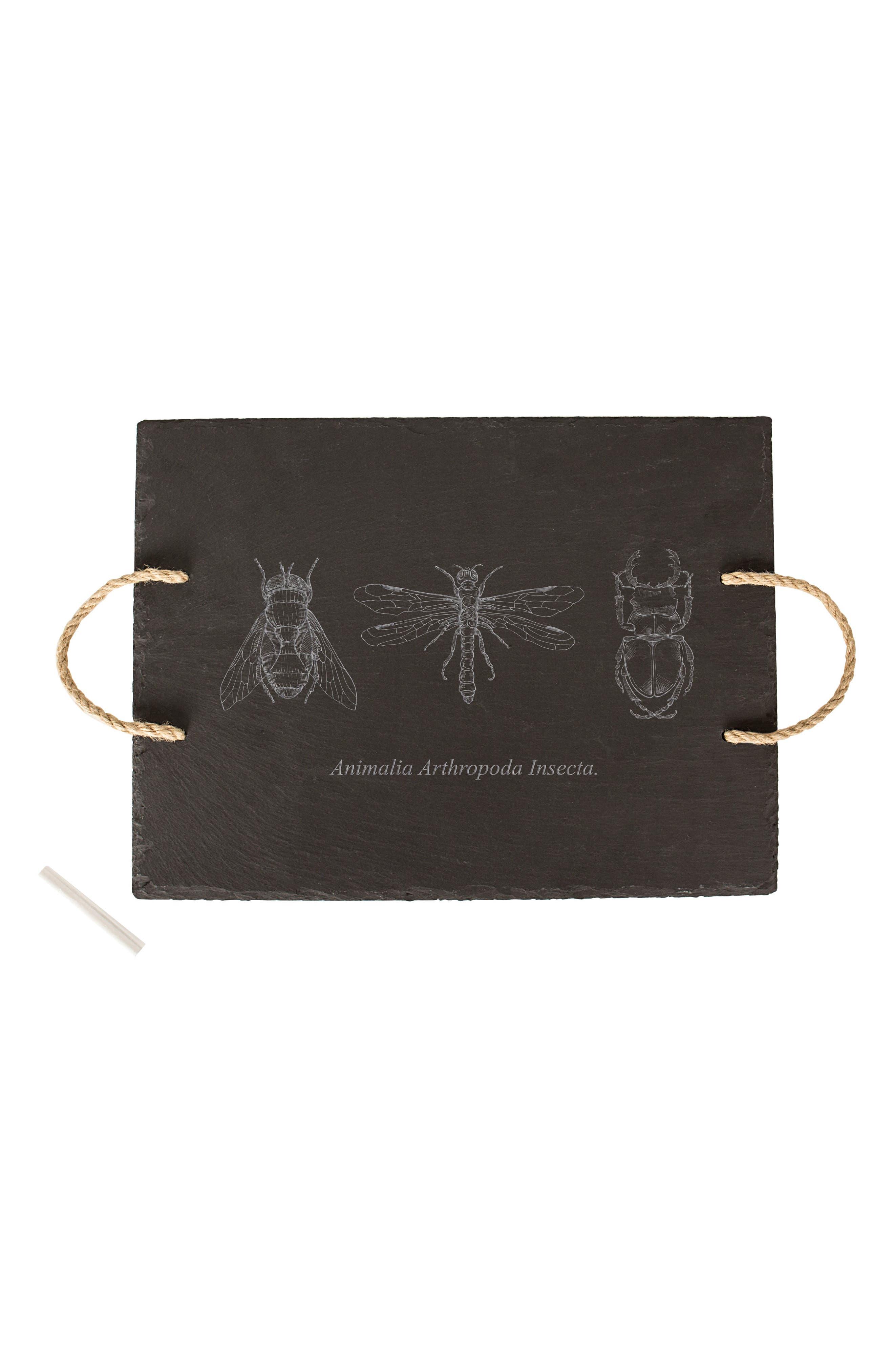 Insect Slate Tray,                             Main thumbnail 1, color,                             001