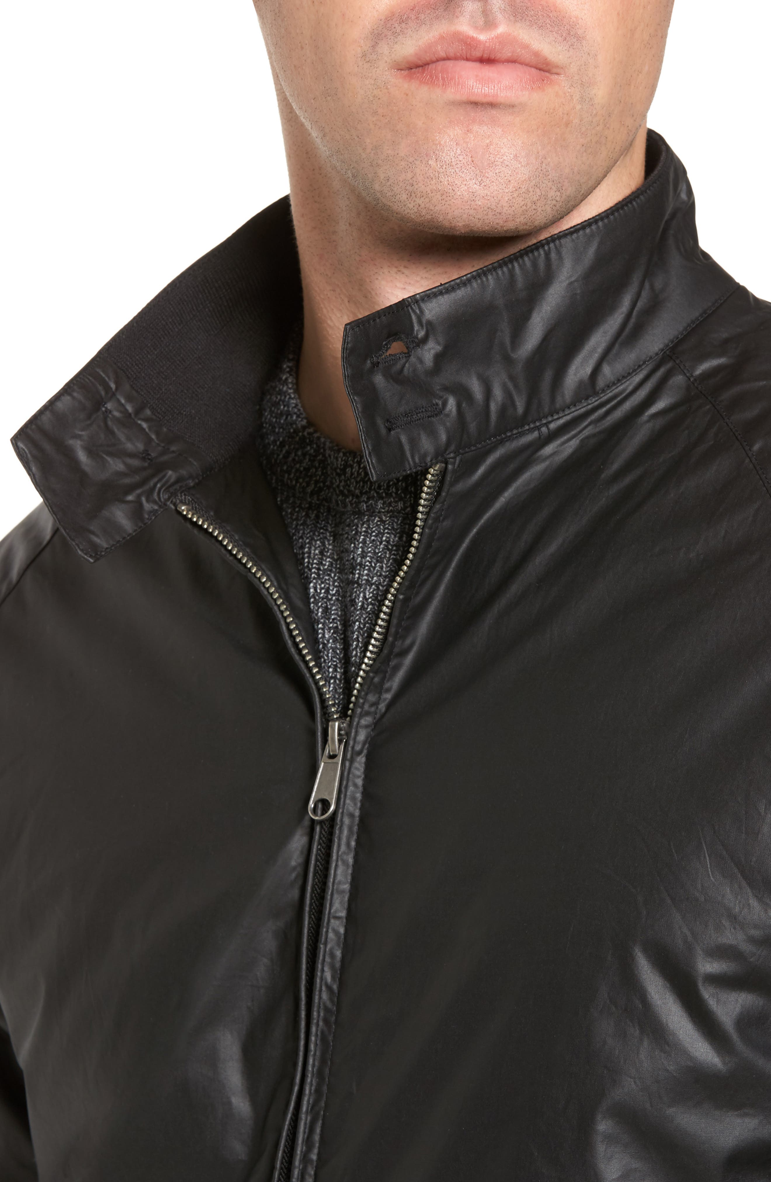 Insulated Harrington Jacket,                             Alternate thumbnail 7, color,