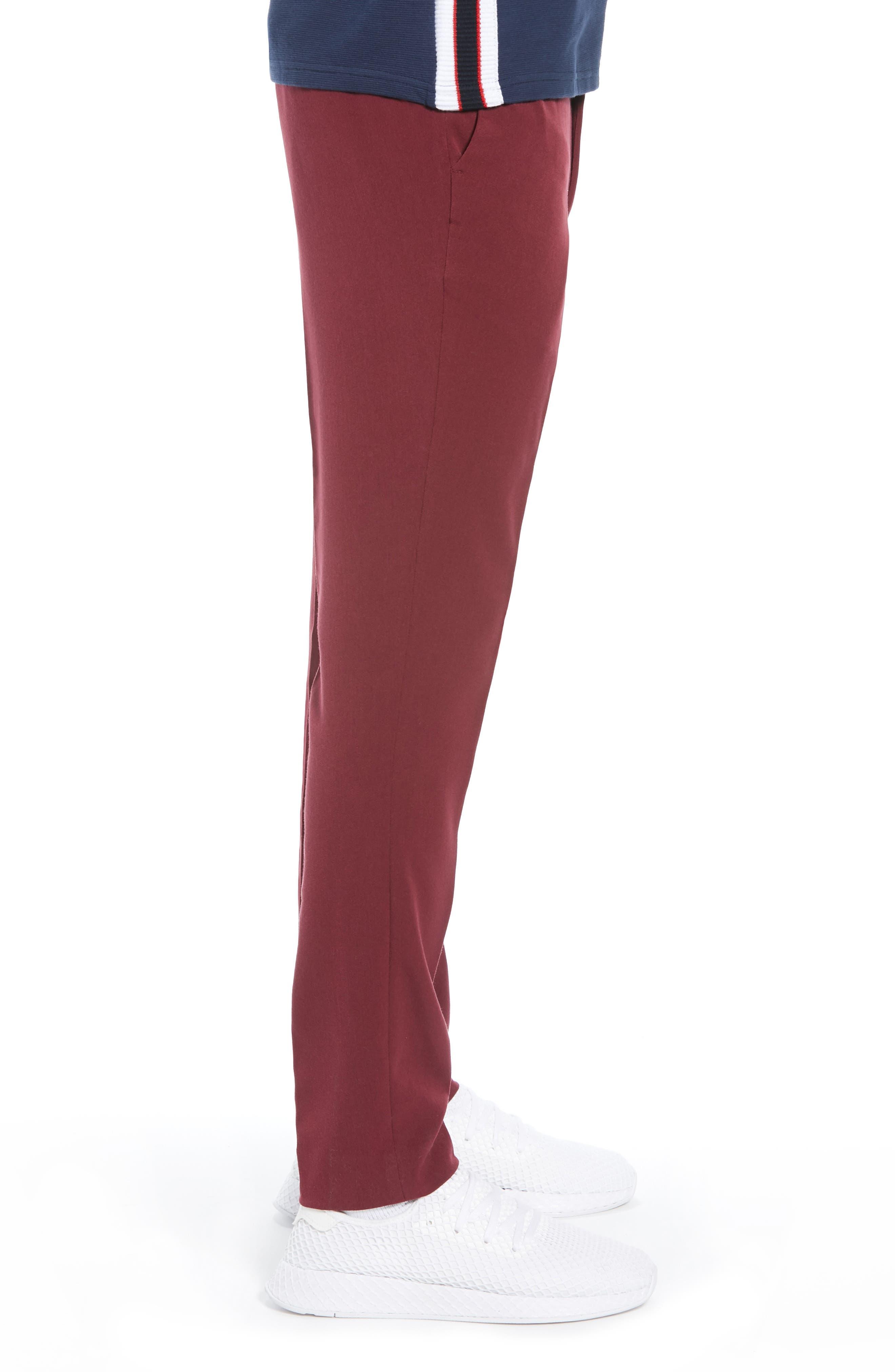Skinny Fit Trousers,                             Alternate thumbnail 3, color,                             PURPLE