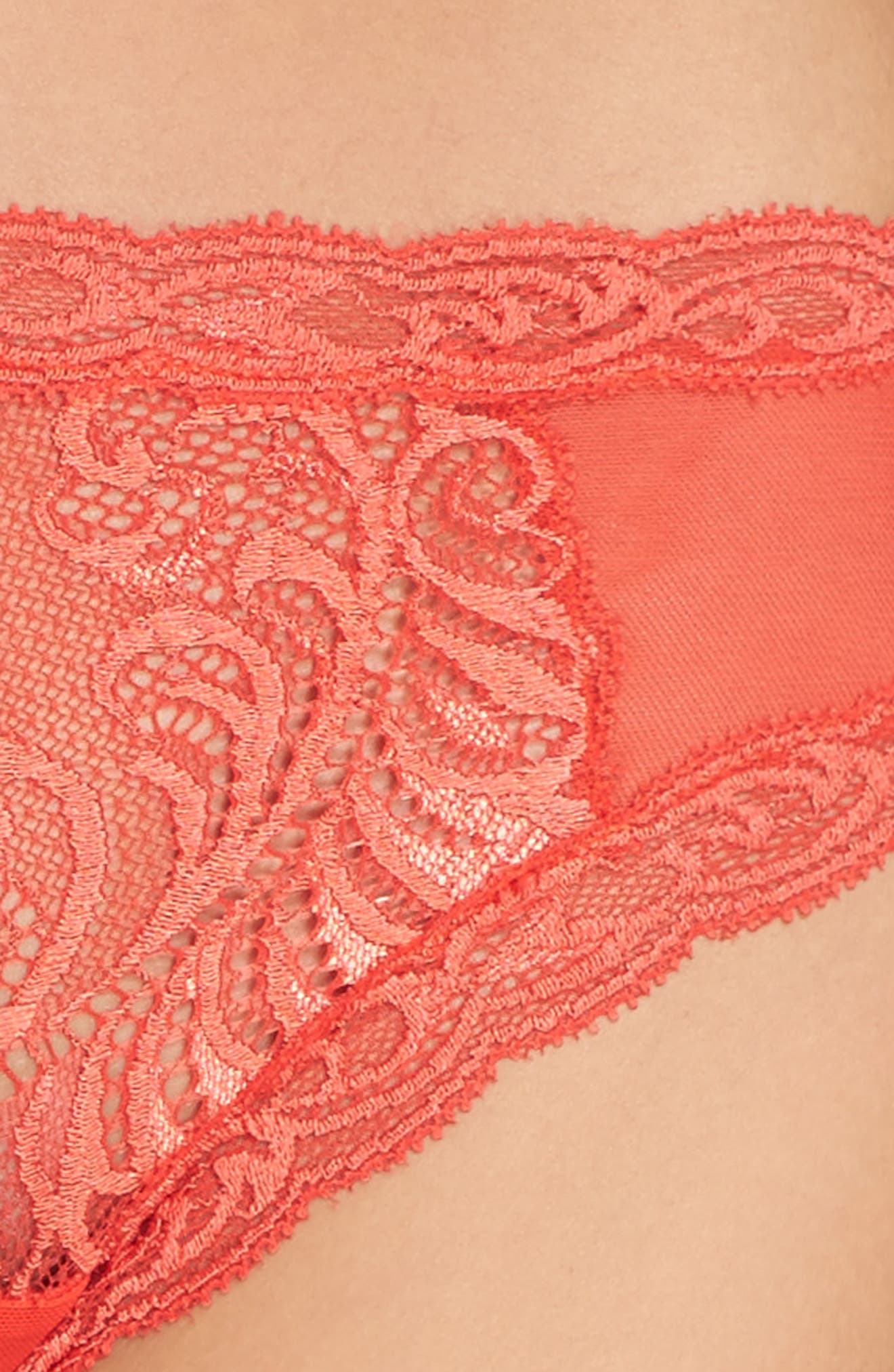 Feathers Hipster Briefs,                             Alternate thumbnail 392, color,