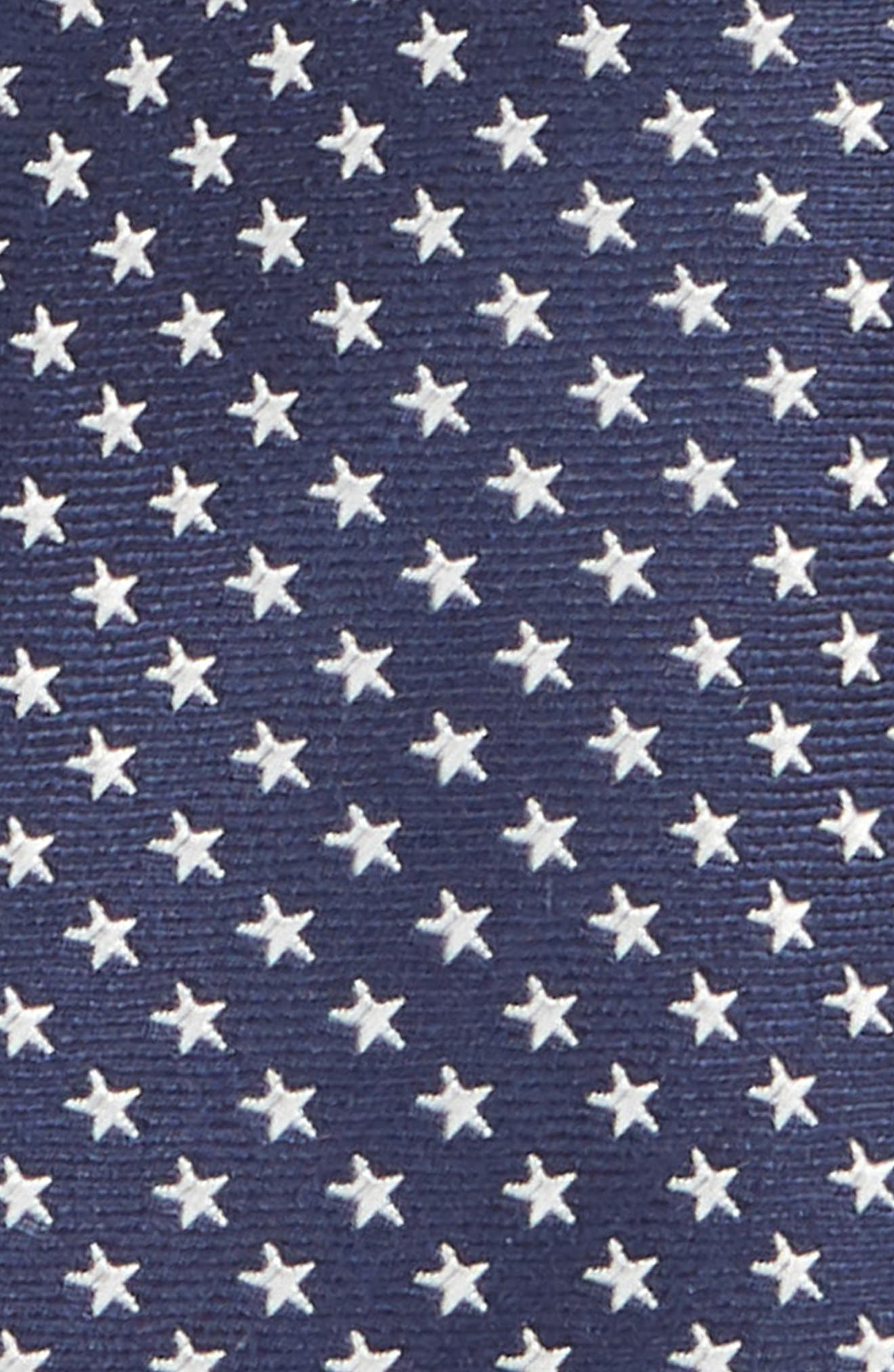 Stella Americana Silk Tie,                             Alternate thumbnail 2, color,