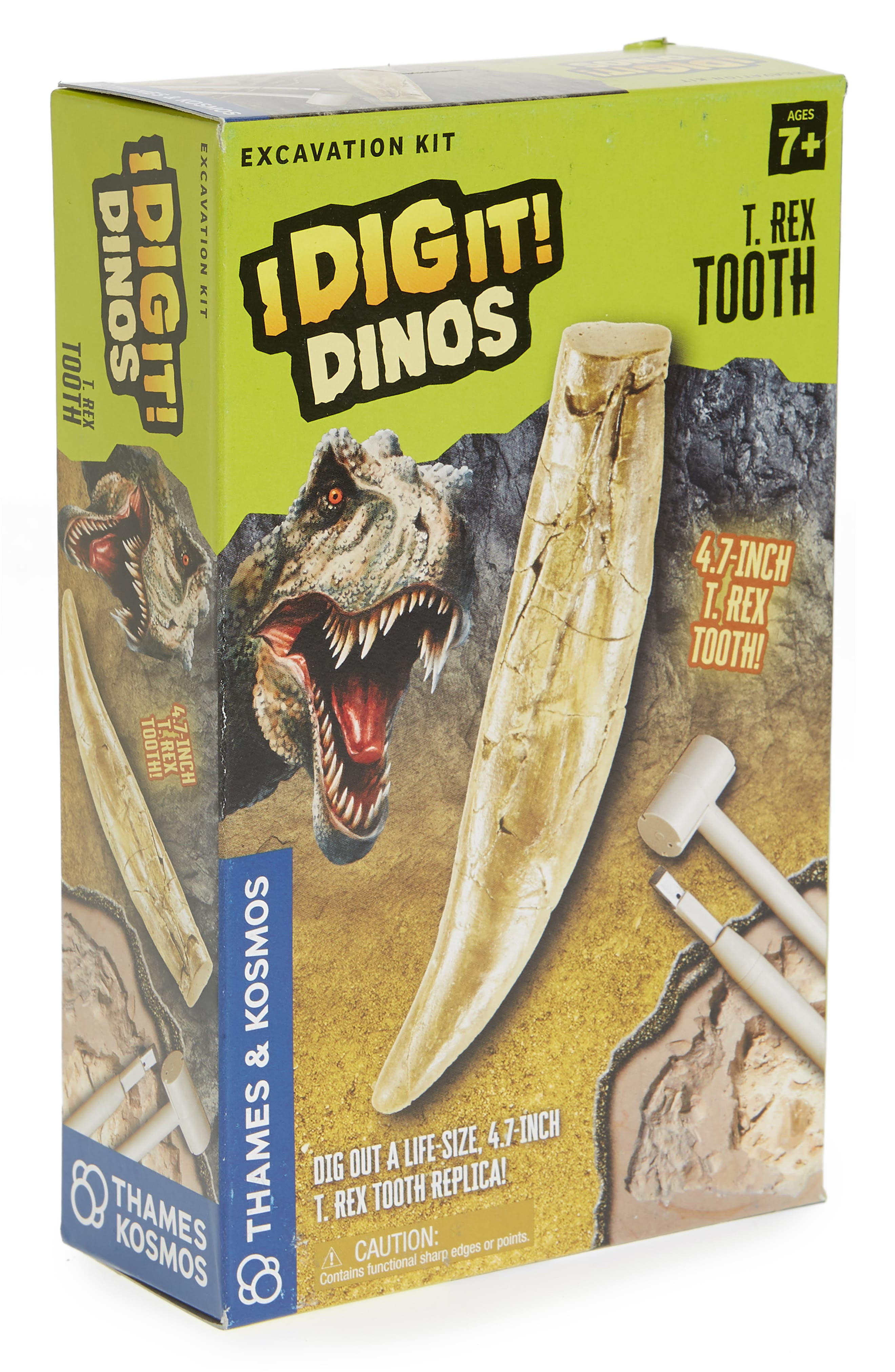 I Dig It! 5-Piece T-Rex Tooth Excavation Kit,                         Main,                         color, 250