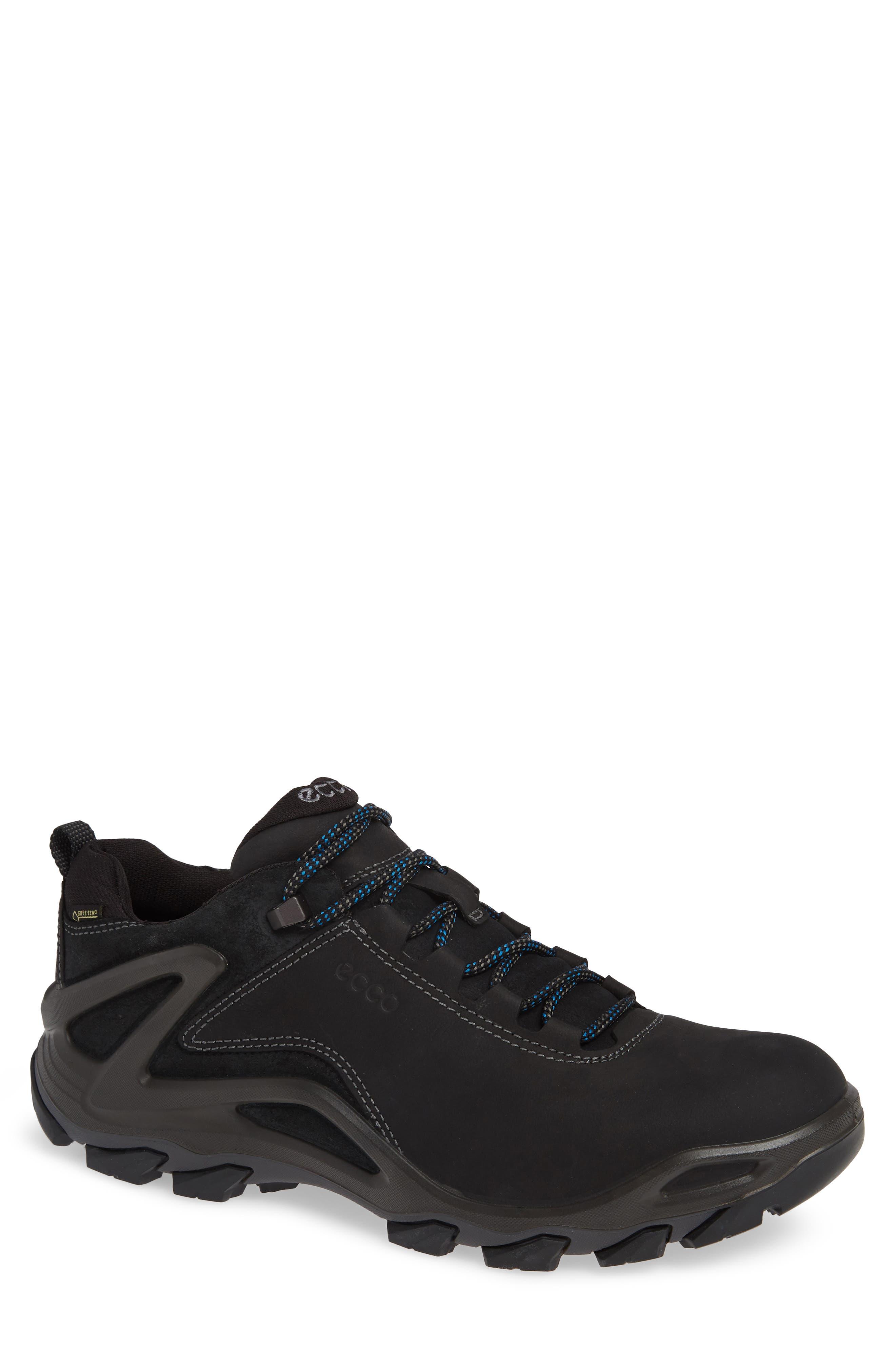 Terra Evo GTX Low Hiking Shoe,                             Main thumbnail 1, color,                             009