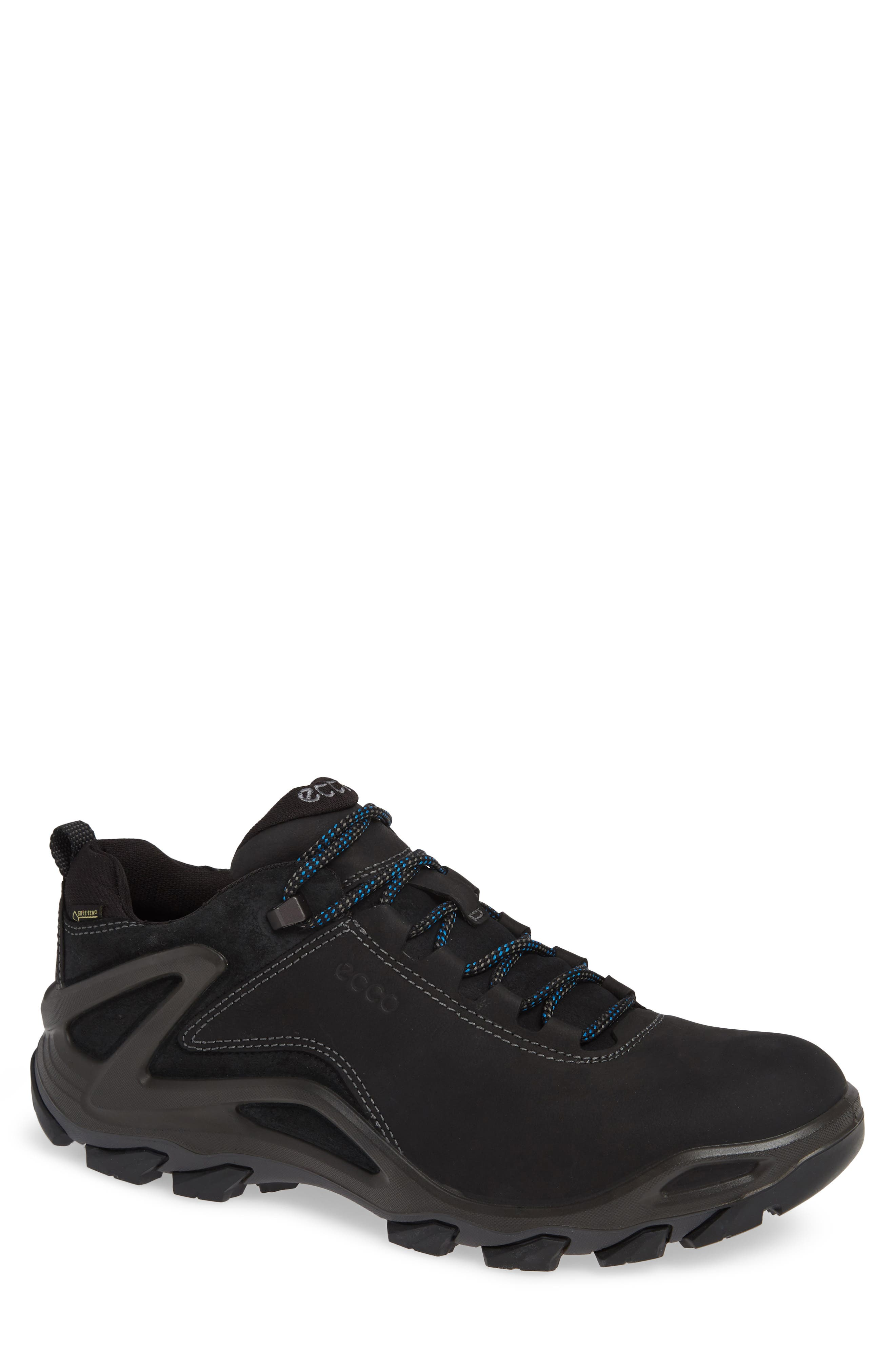 Terra Evo GTX Low Hiking Shoe,                         Main,                         color, 009