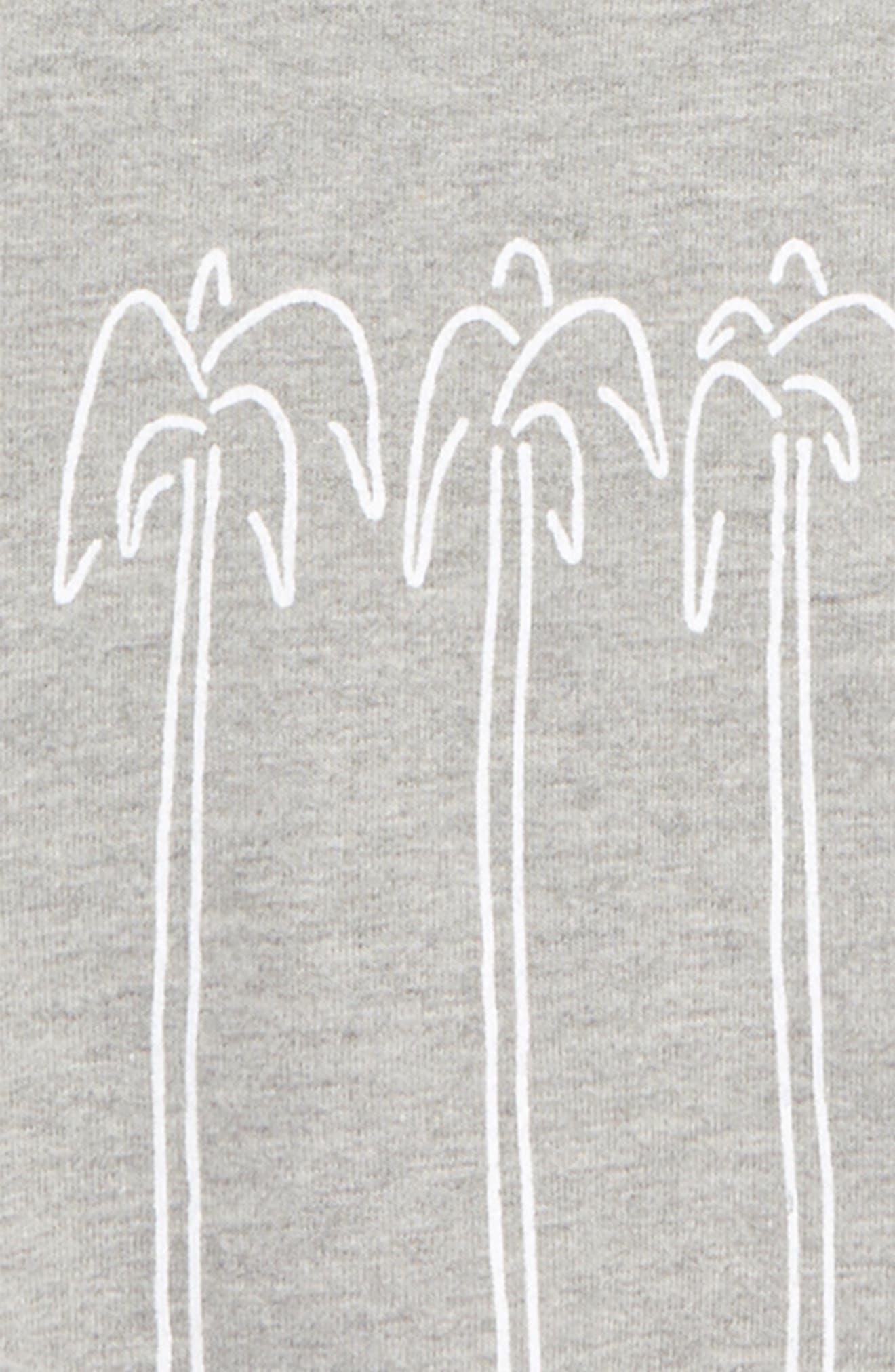 Nolan Organic Cotton Sweatshirt,                             Alternate thumbnail 2, color,                             020