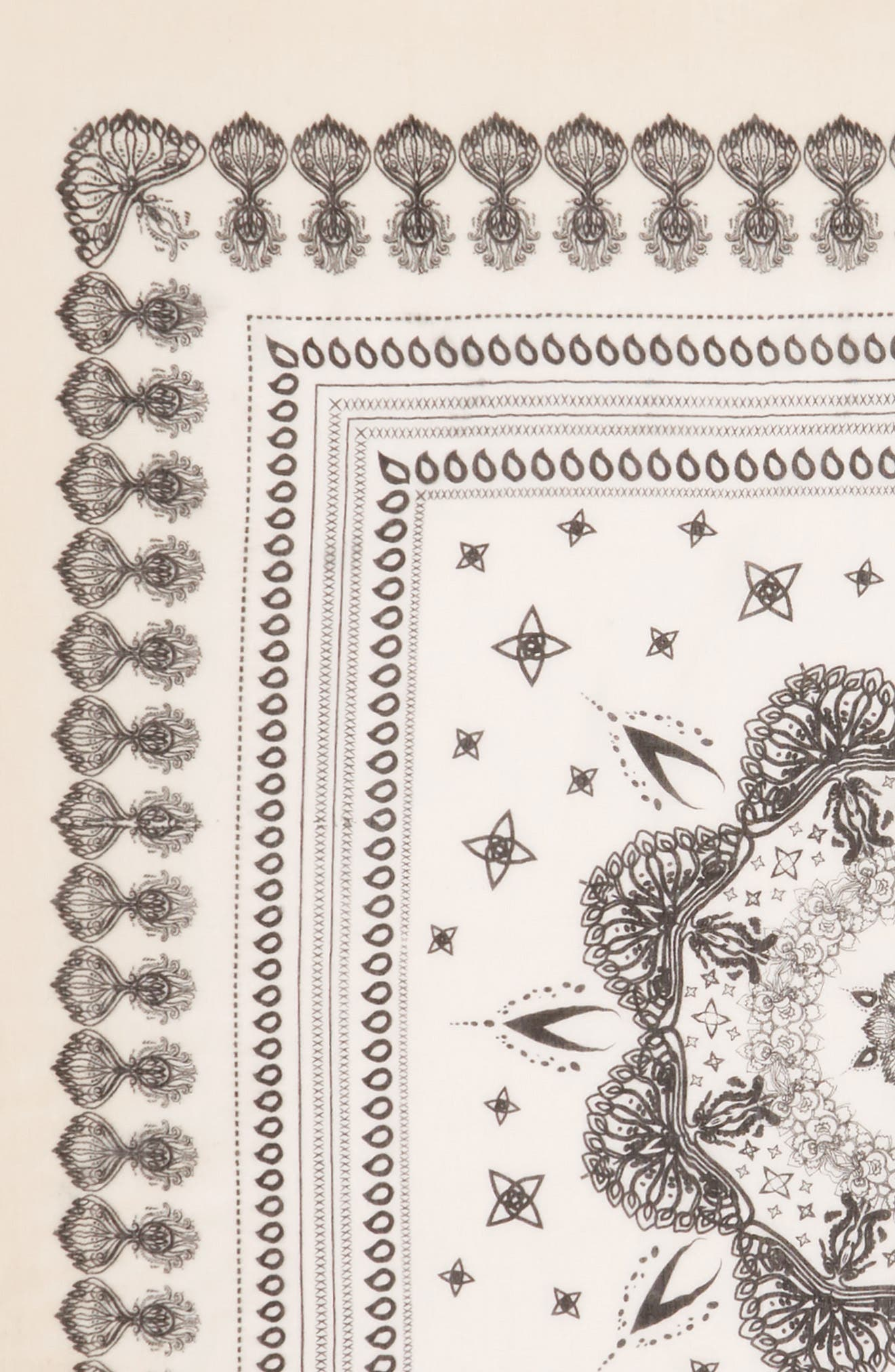 Paisley Print Scarf,                             Alternate thumbnail 3, color,                             250