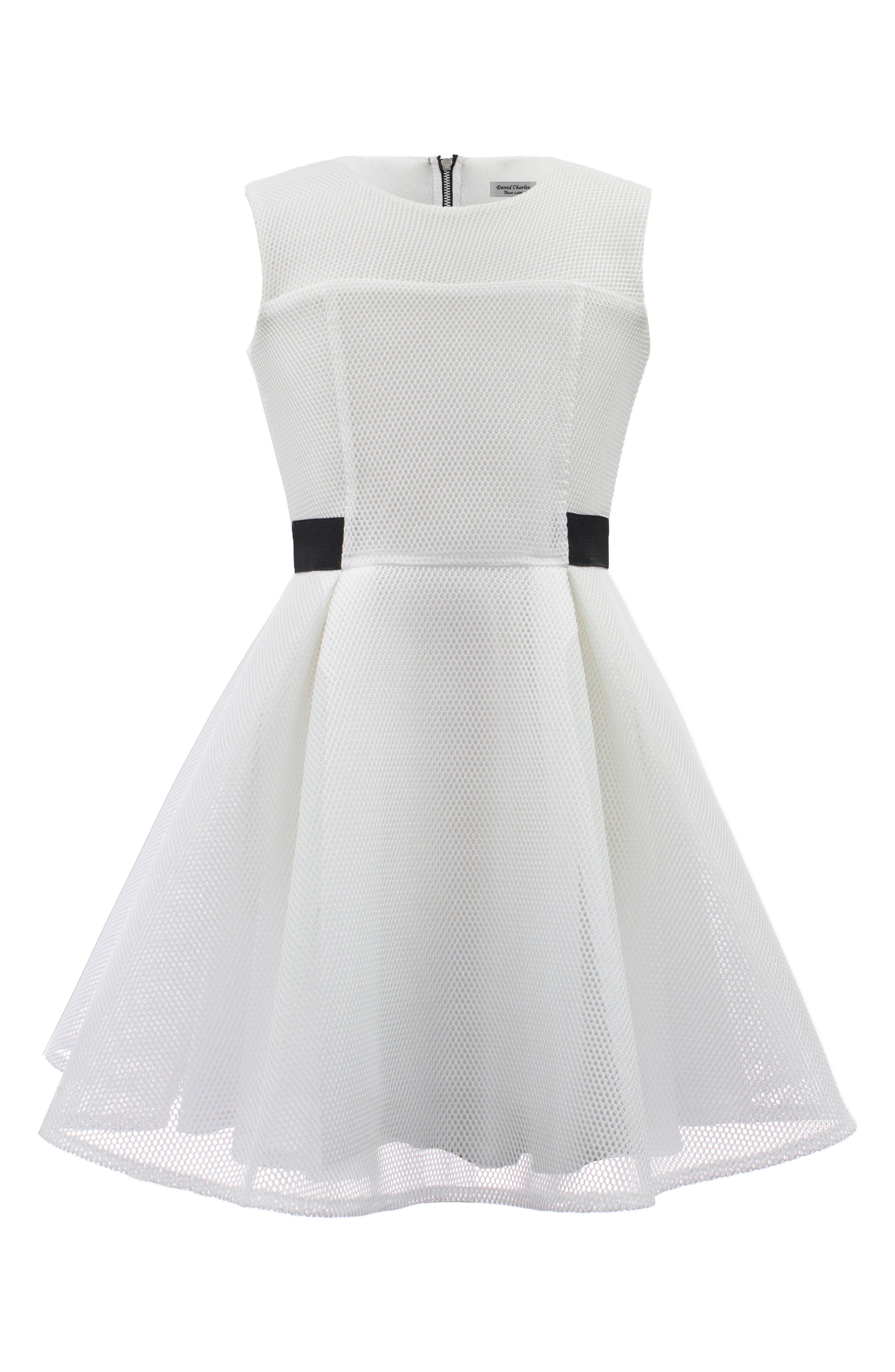 Techno Mesh Fit & Flare Dress,                         Main,                         color, IVORY
