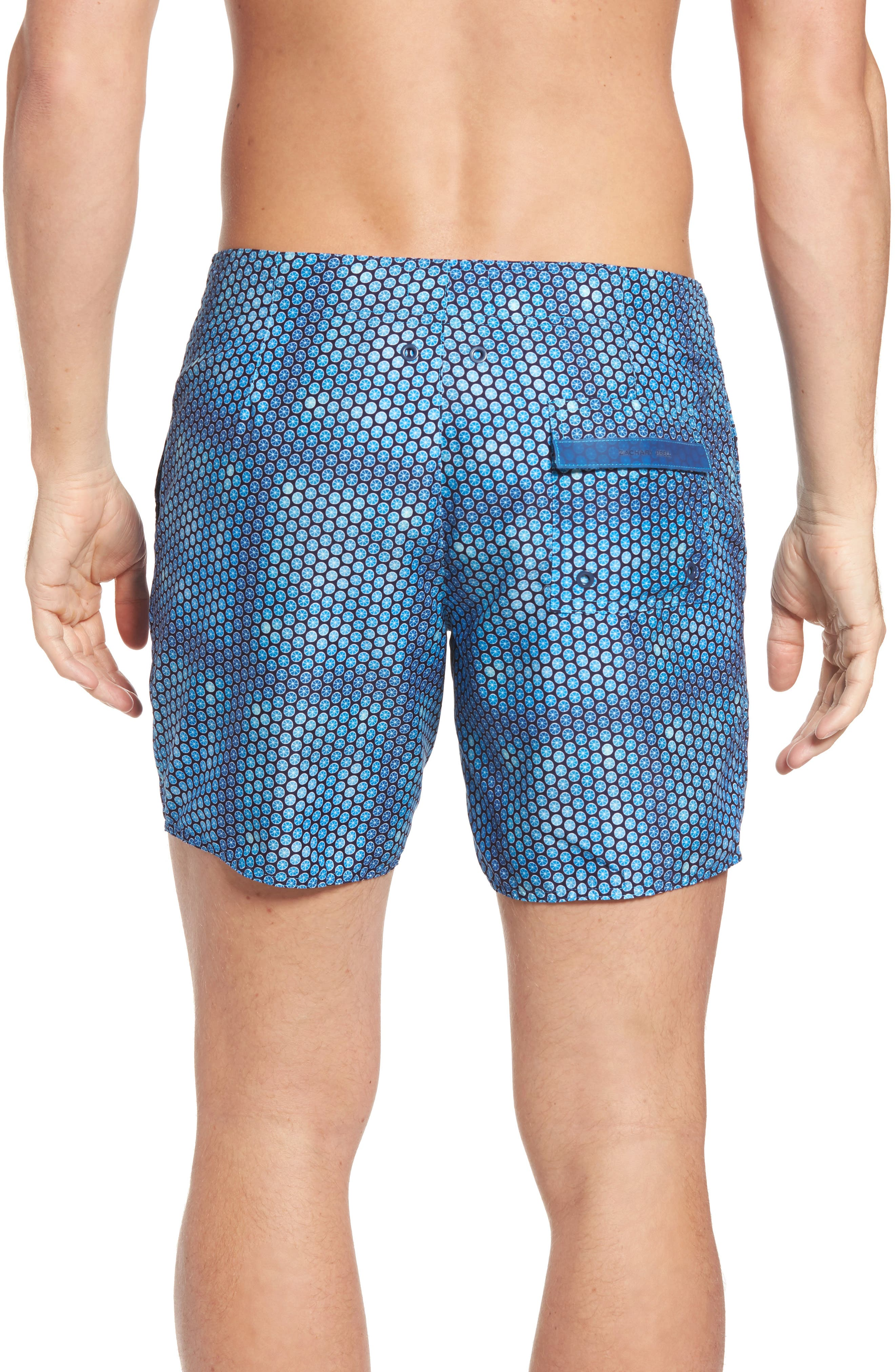 Torreya Swim Trunks,                             Alternate thumbnail 3, color,