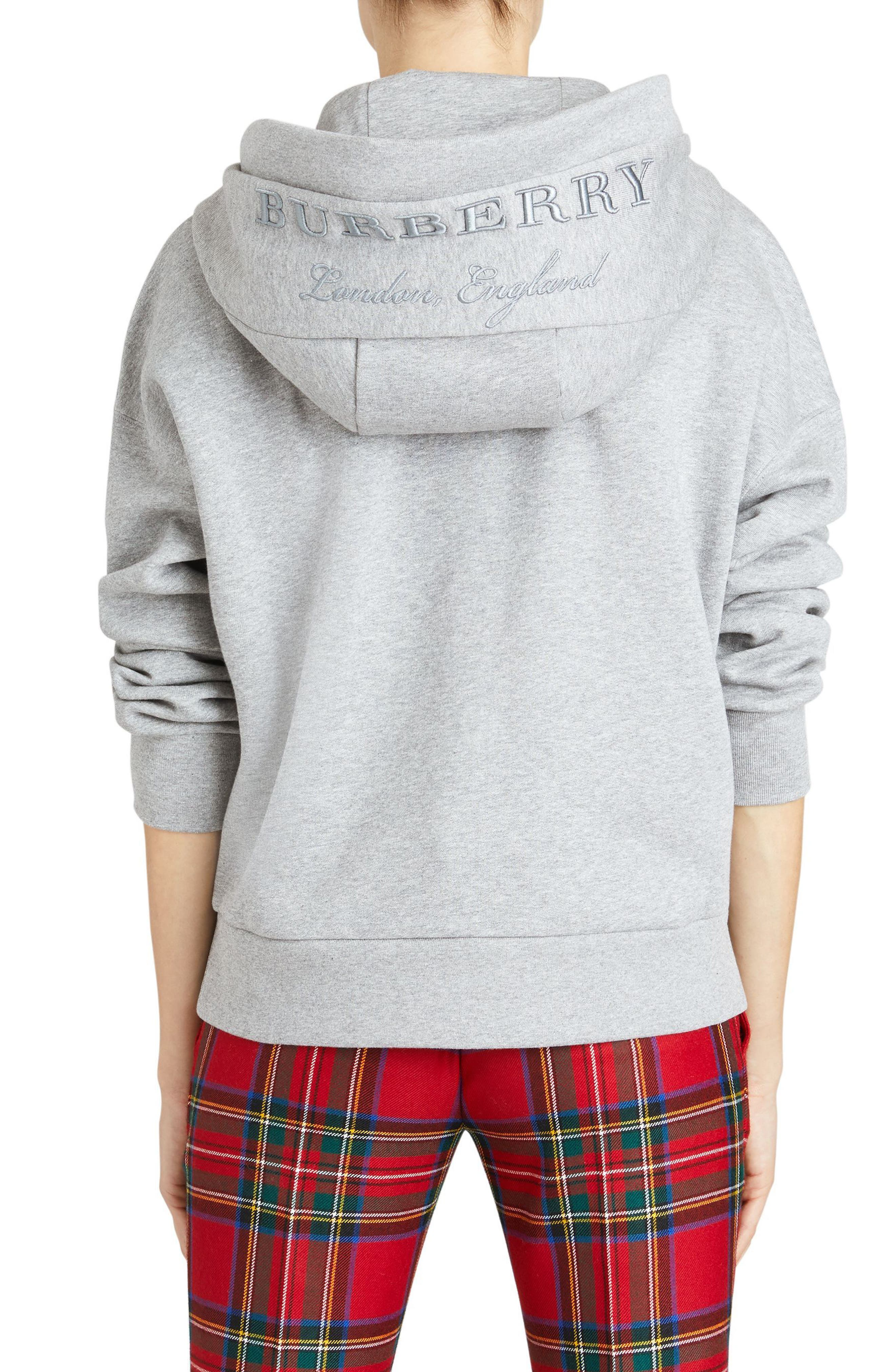 Escara Embroidered Hoodie,                             Alternate thumbnail 4, color,