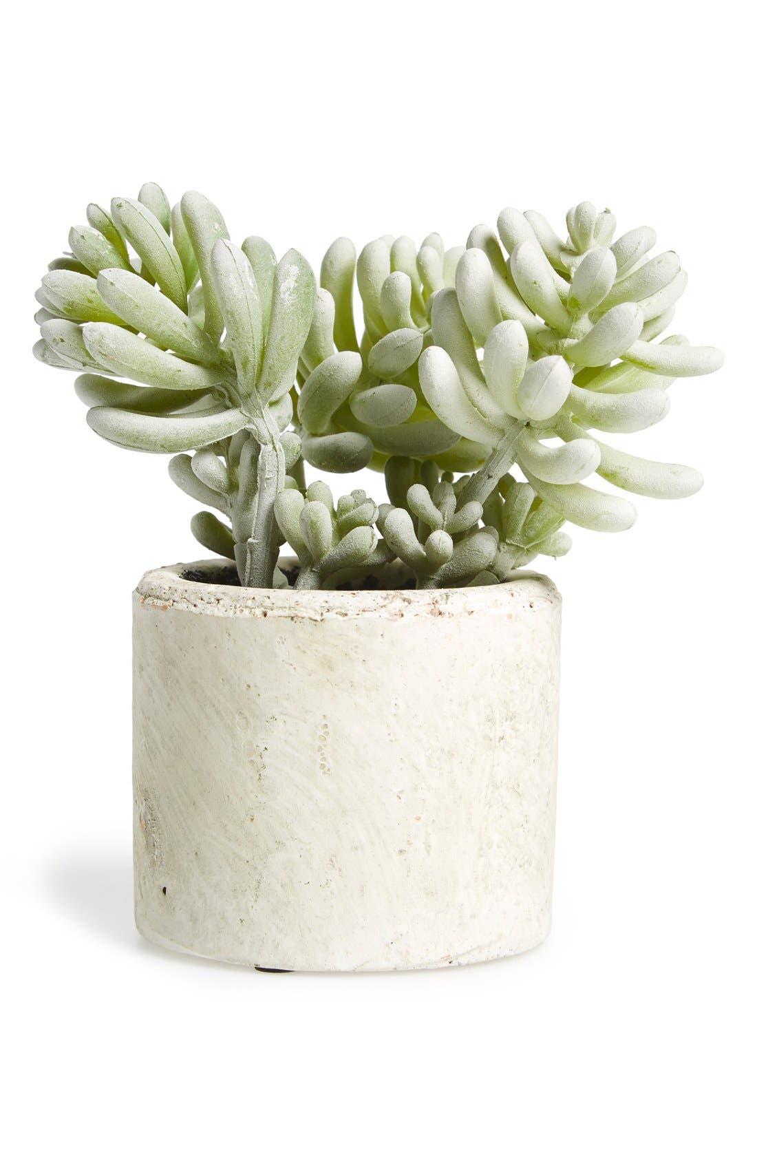 Mini Artificial Succulent,                         Main,                         color, 304
