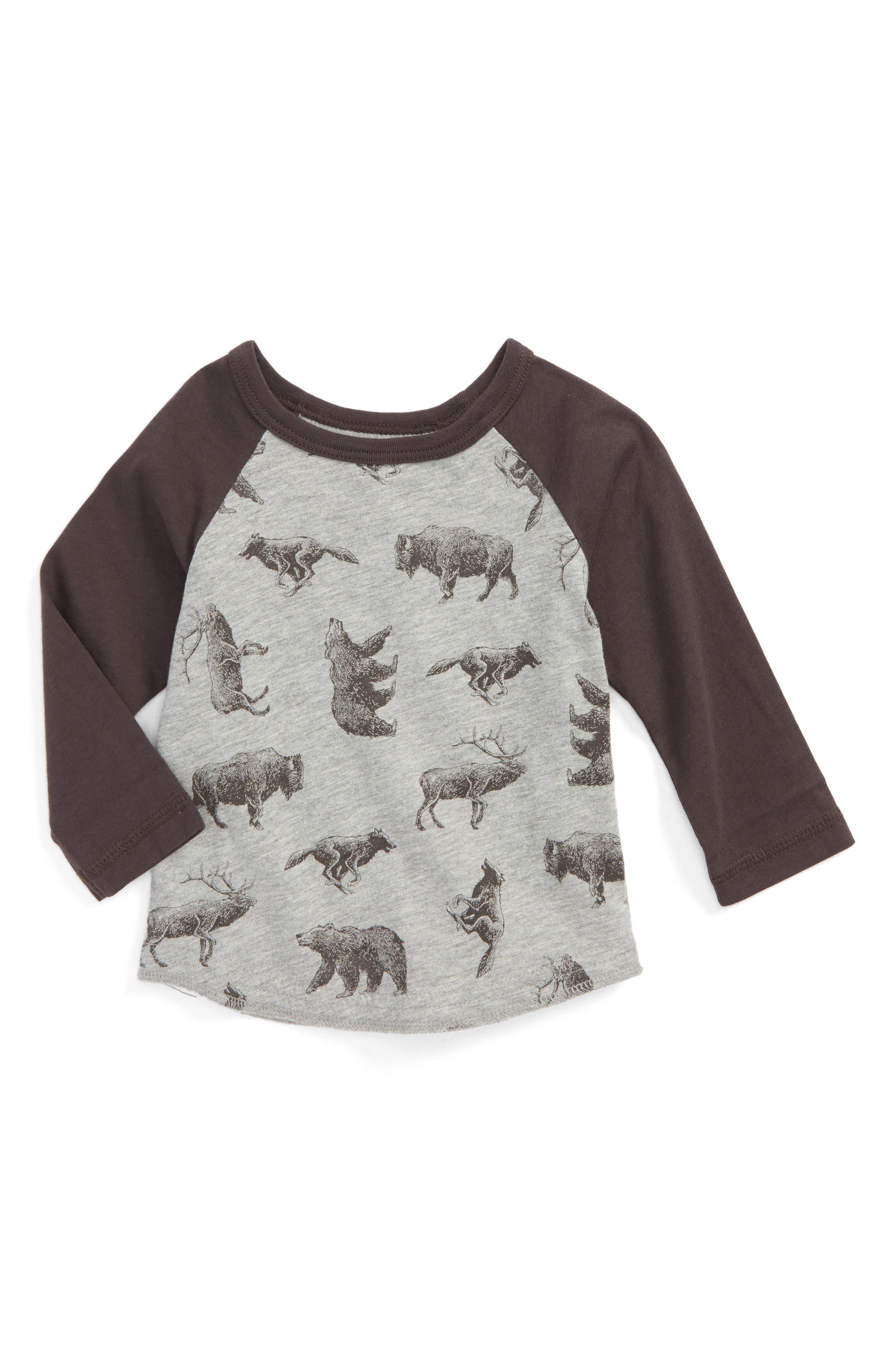 Allover Animal Print Raglan T-Shirt,                             Main thumbnail 1, color,                             031