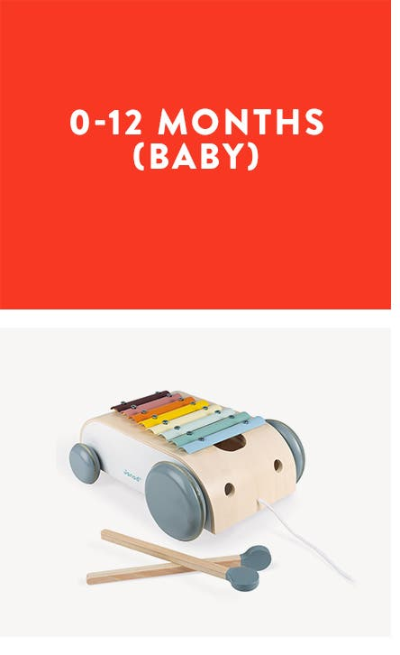0-12 months (baby). A xylophone on wheels.
