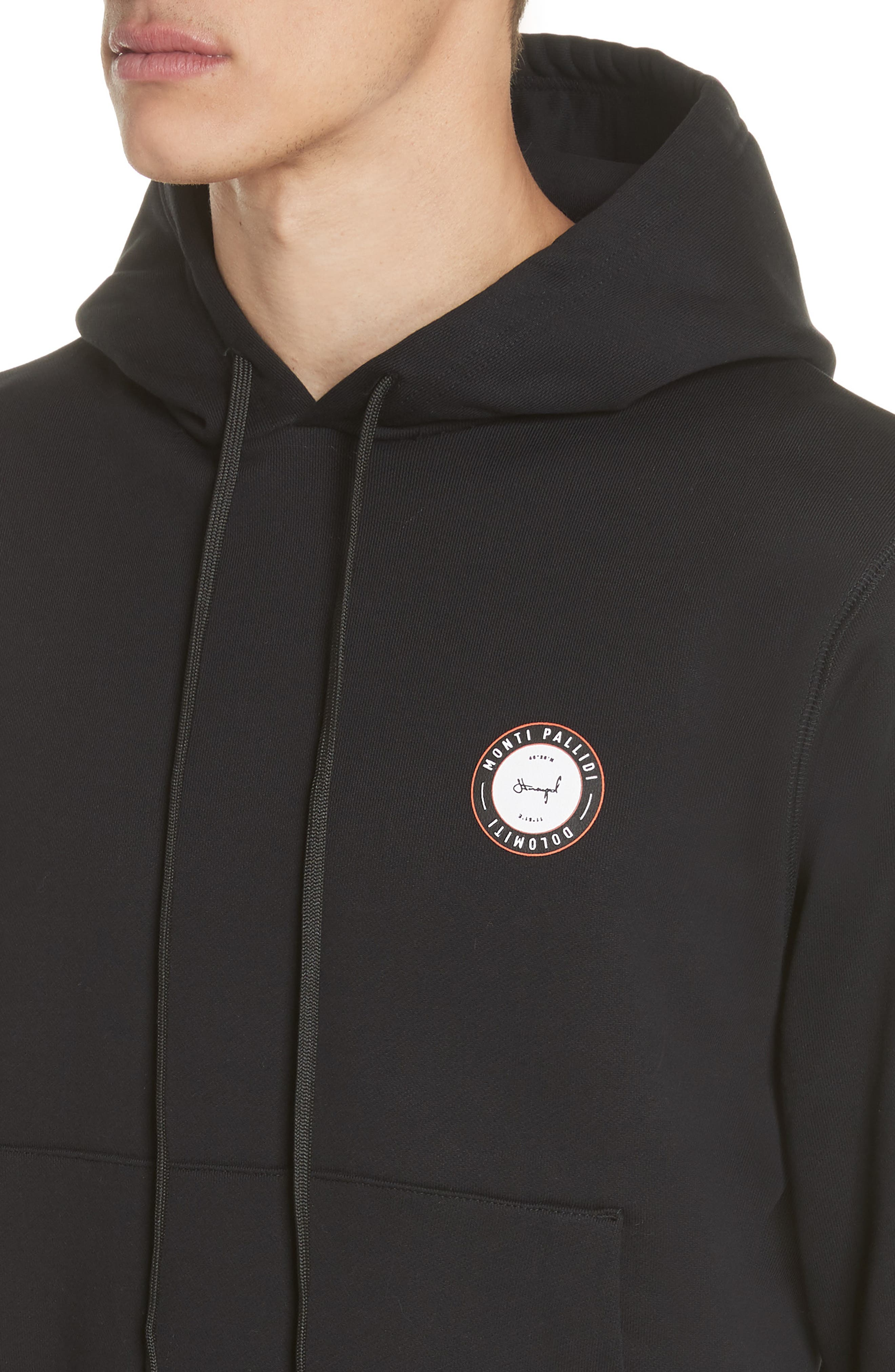 Monti Pallidi Graphic Hoodie,                             Alternate thumbnail 4, color,                             001