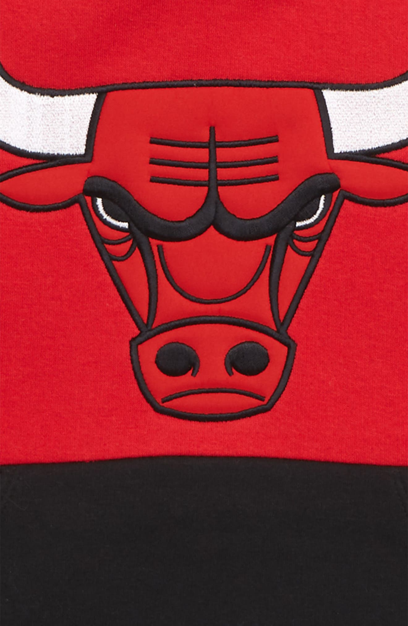 NIKE,                             NBA Logo Chicago Bulls Regulator Hoodie,                             Alternate thumbnail 2, color,                             GREY MULTI