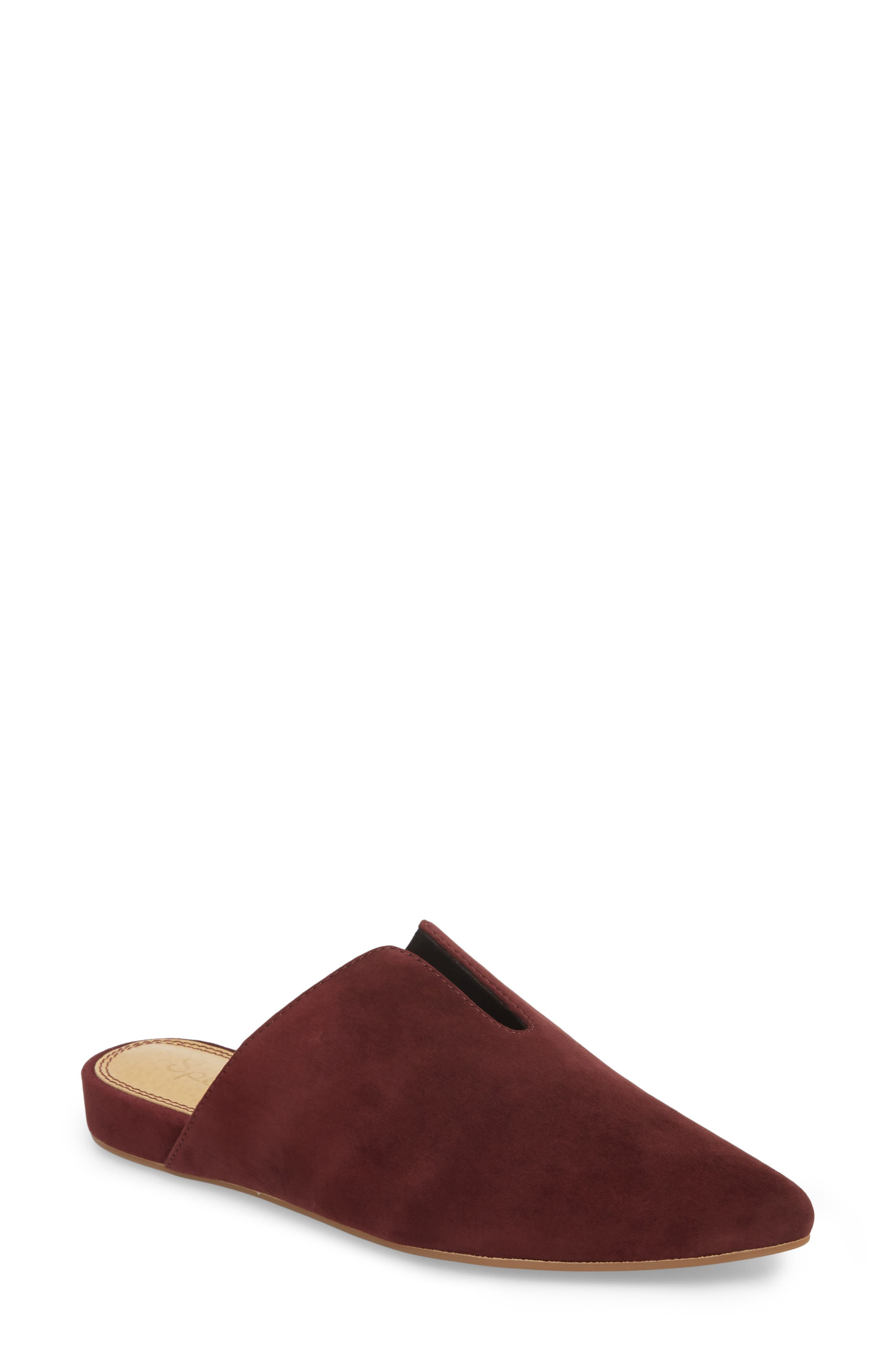 Nieves Mule,                             Main thumbnail 1, color,                             DEEP PLUM SUEDE