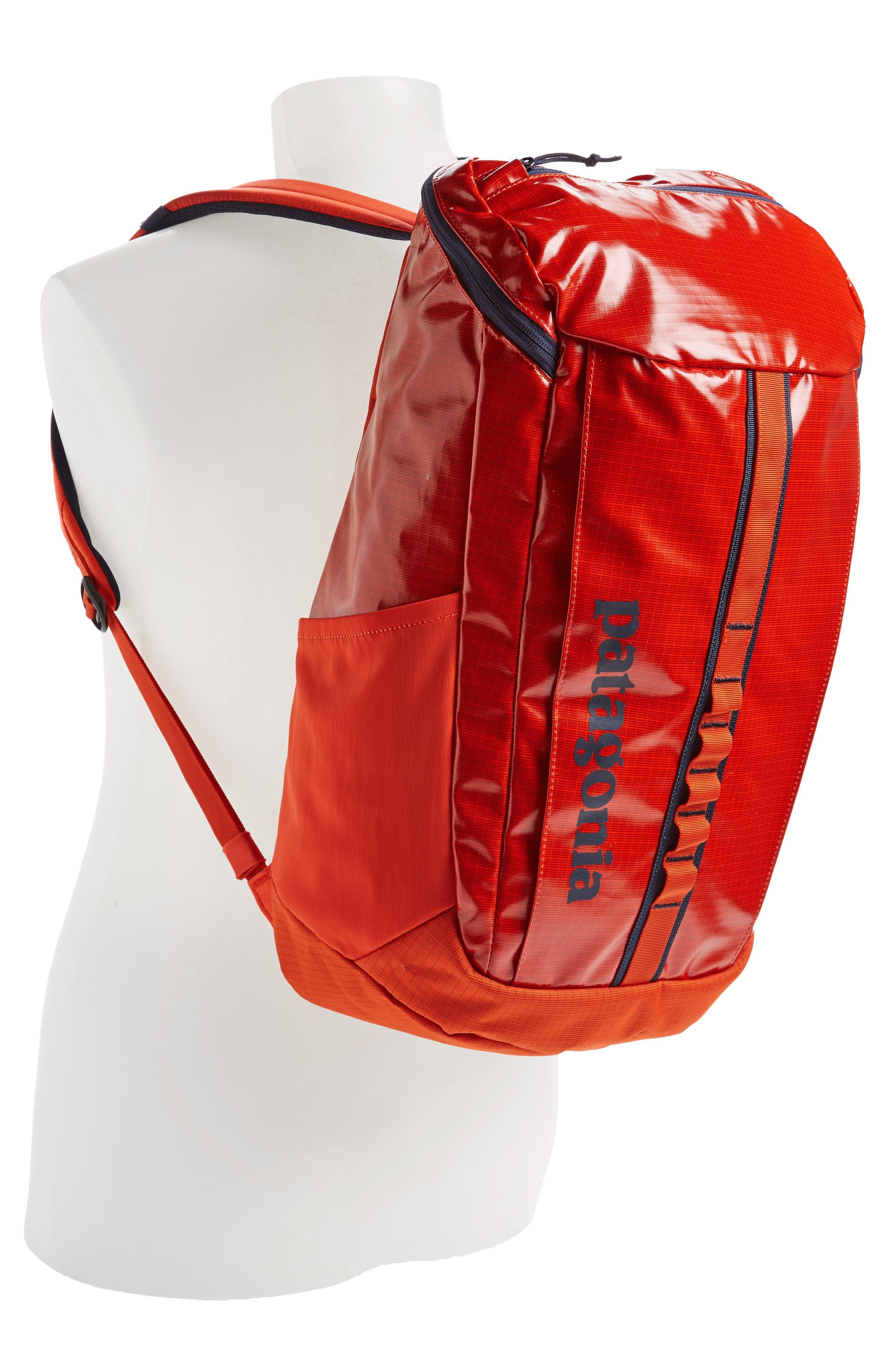 Black Hole 25 Liter Backpack,                             Alternate thumbnail 2, color,                             PAINTBRUSH RED