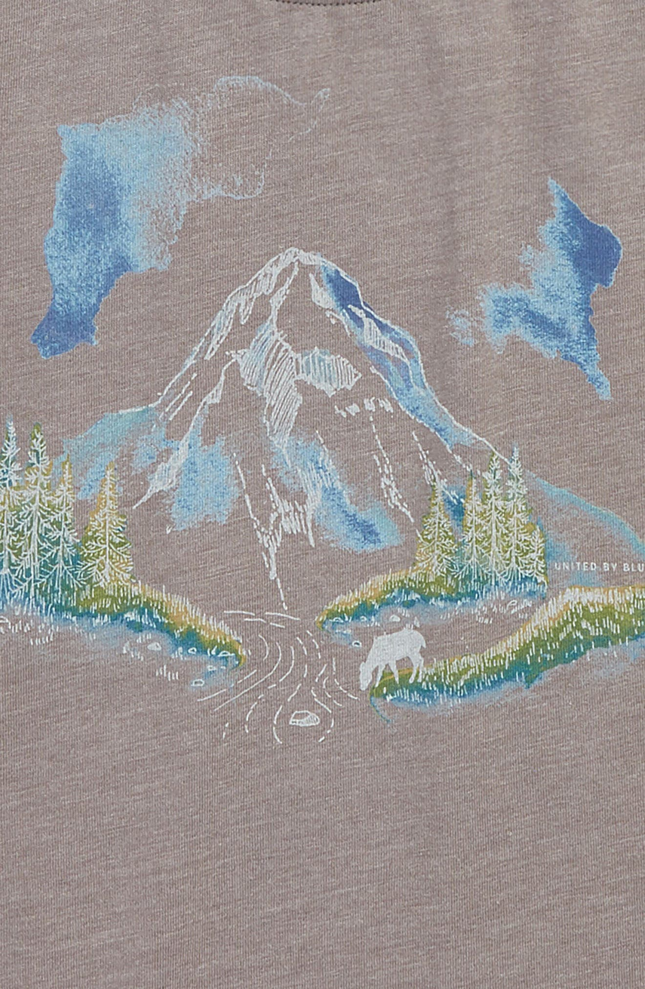 River Mountain T-Shirt,                             Alternate thumbnail 2, color,                             STEEL GREY