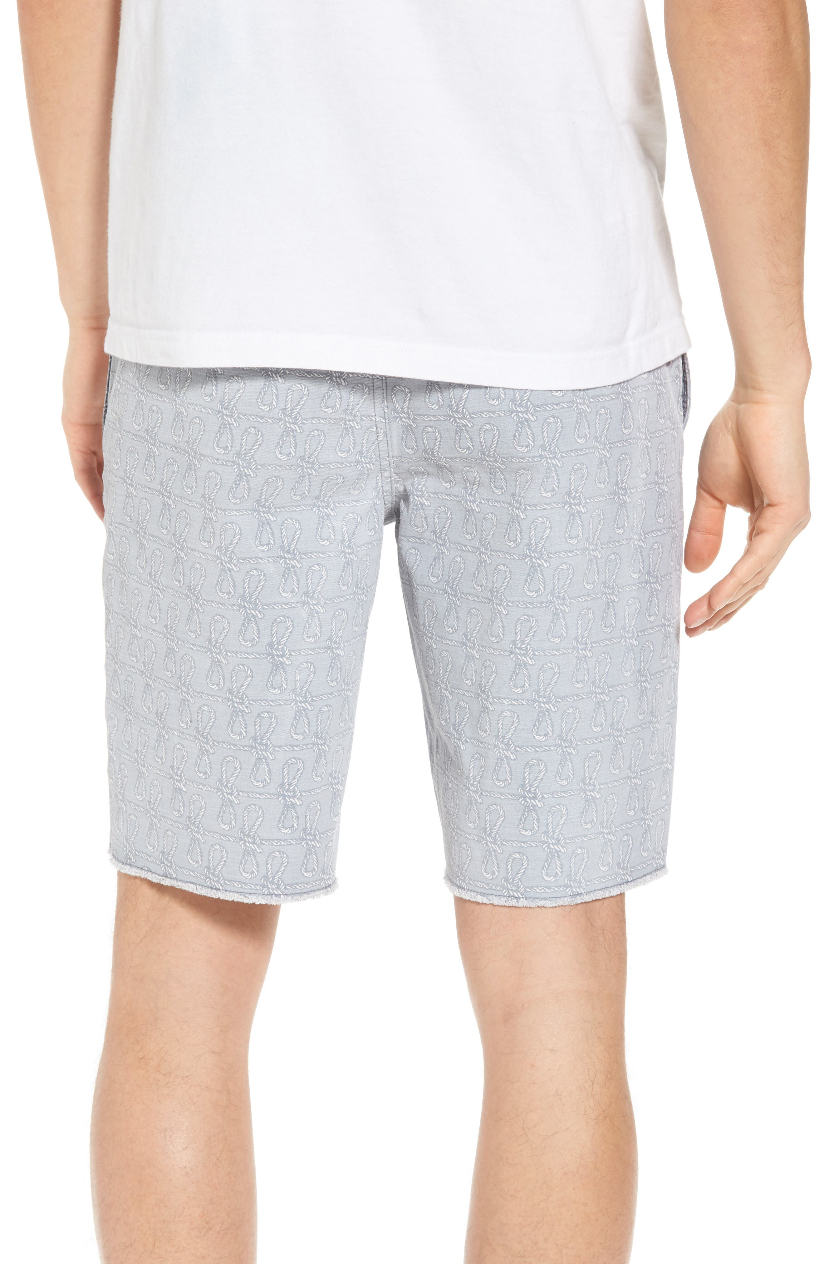 THE RAIL,                             Print Frost Wash Shorts,                             Alternate thumbnail 2, color,                             030